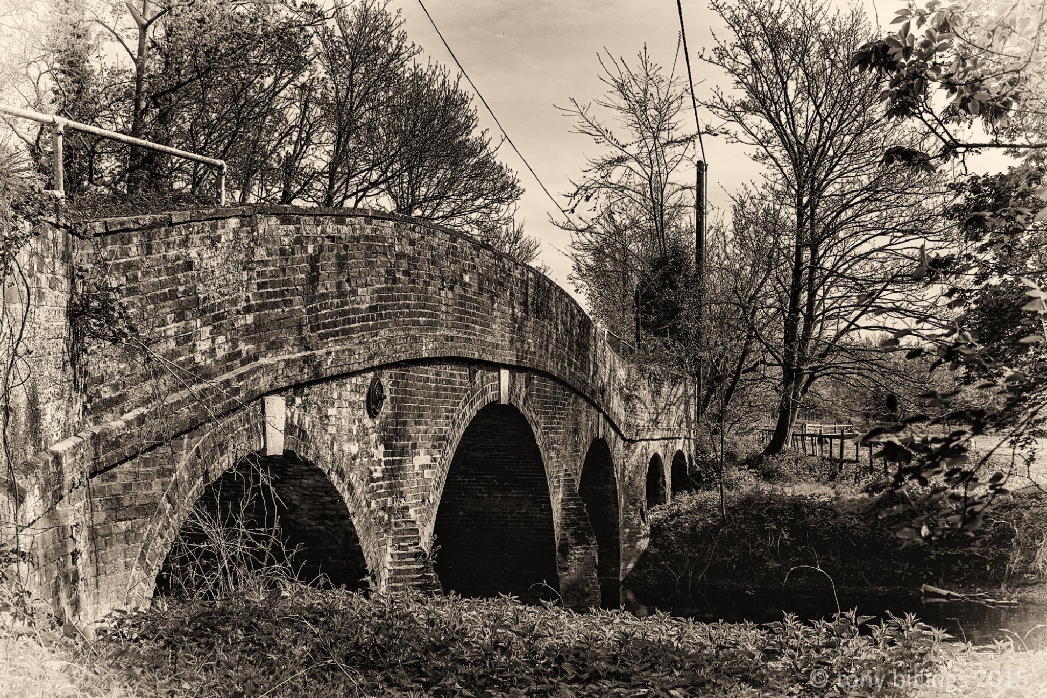 Wickham Mill Bridge by tony billings