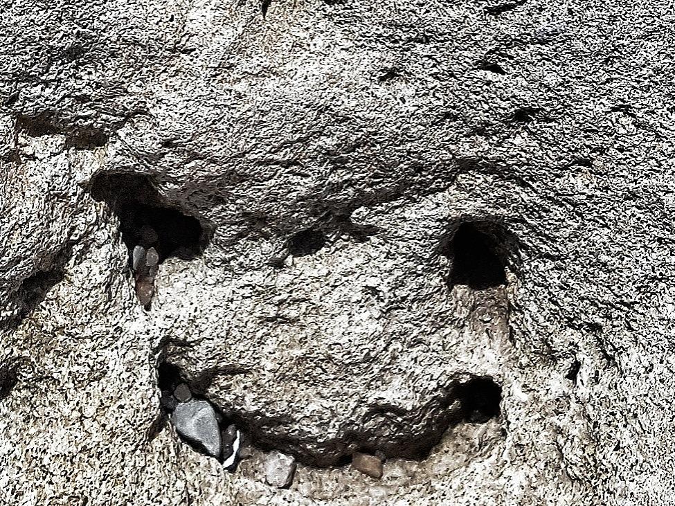 Stone Face  by goran.egevad