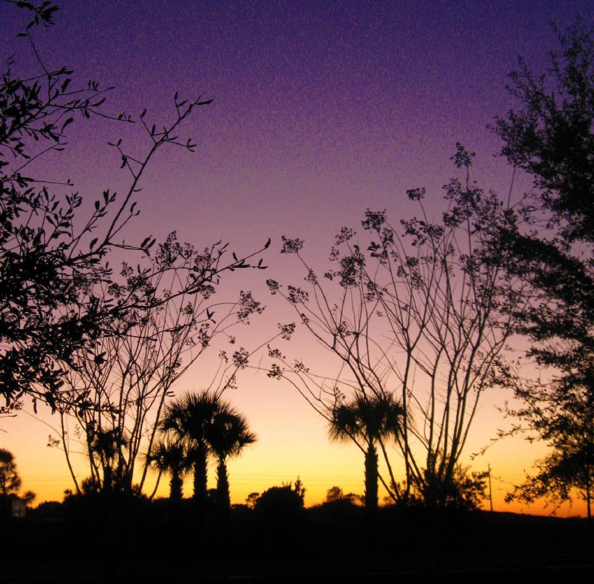 Colorful Sunset by treva.maye