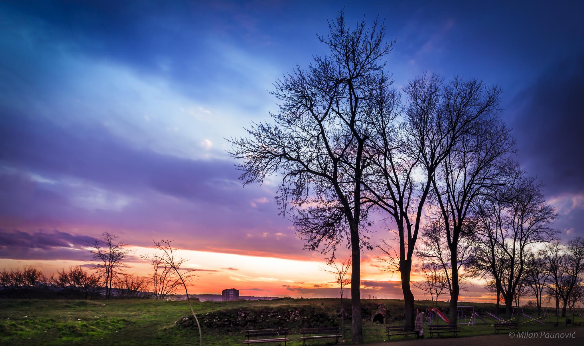 Colorful Sunset by Milan Paunovic