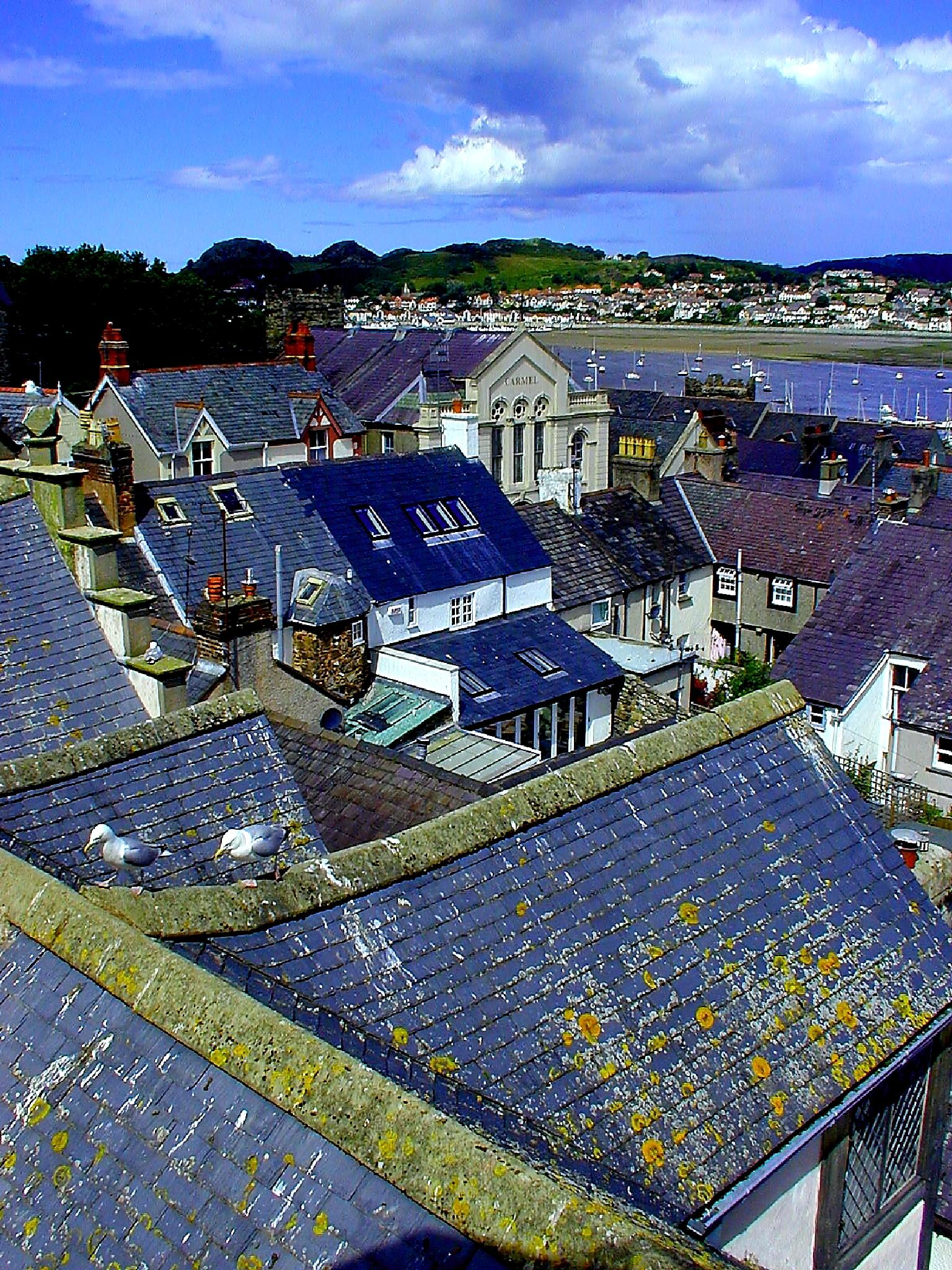 Rooftops in Conwy by Mark Ratcliffe