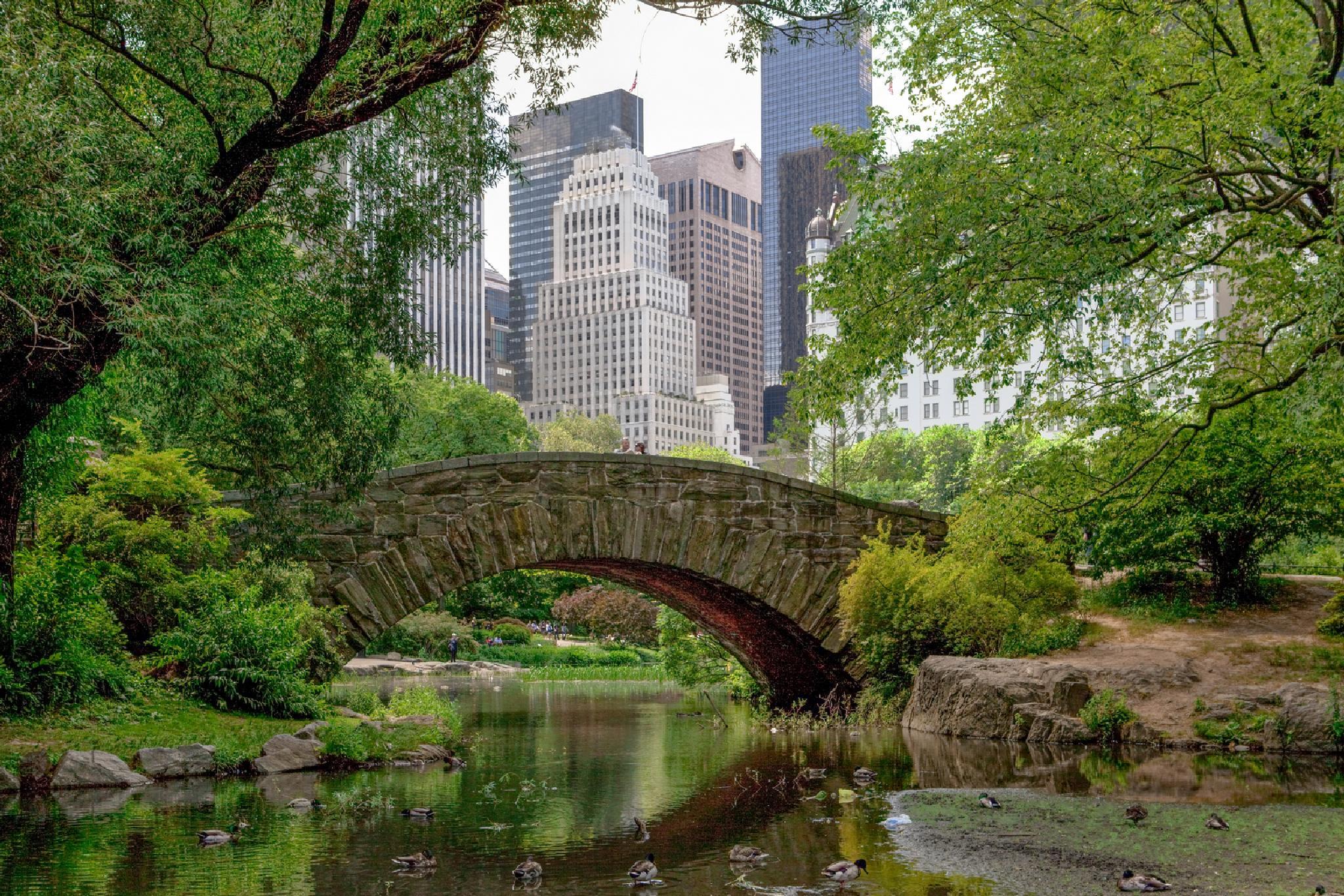 Central Park. Manhattan by Ana Gomez
