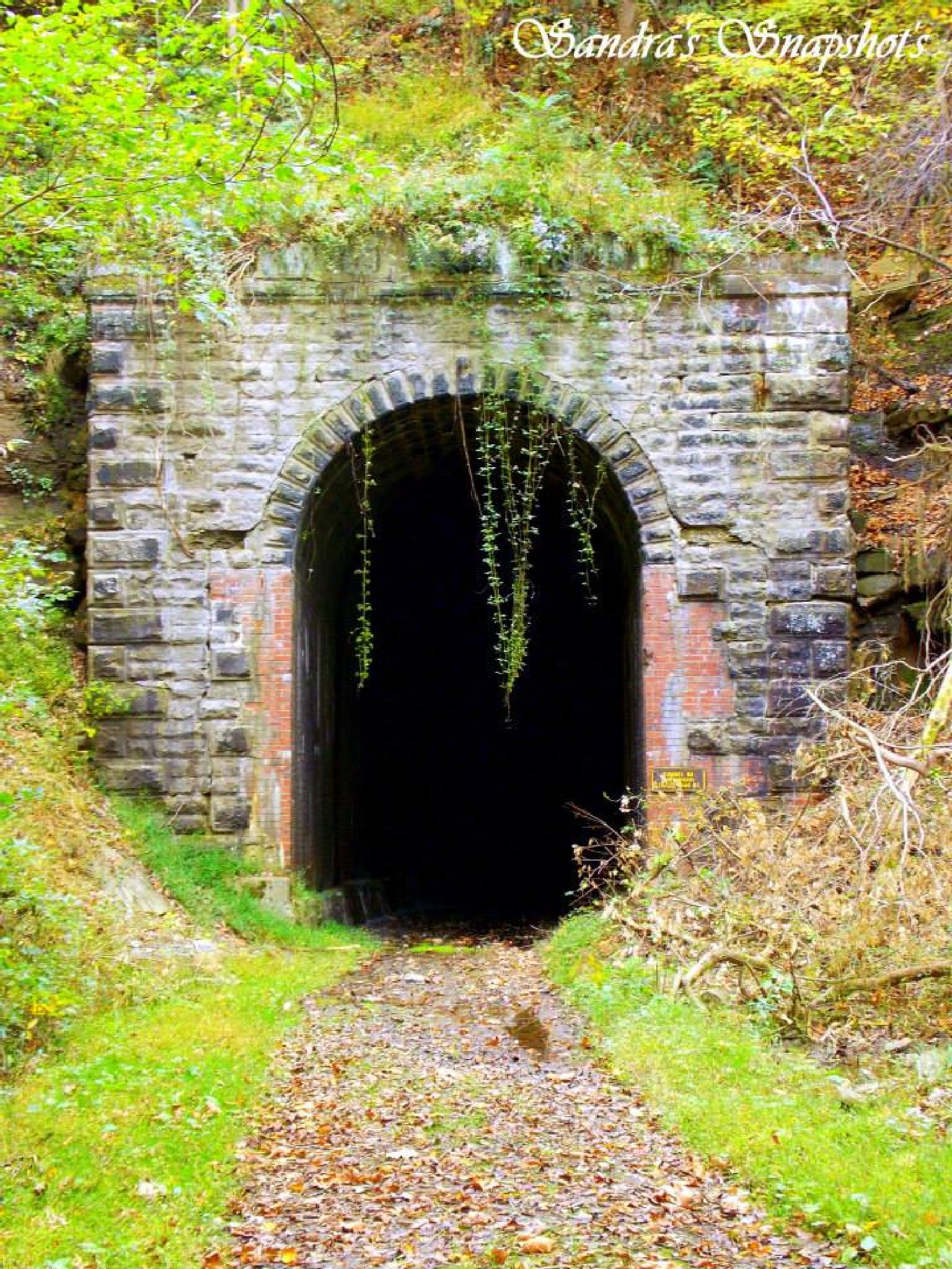 Train Tunnel by sandras.snapshots