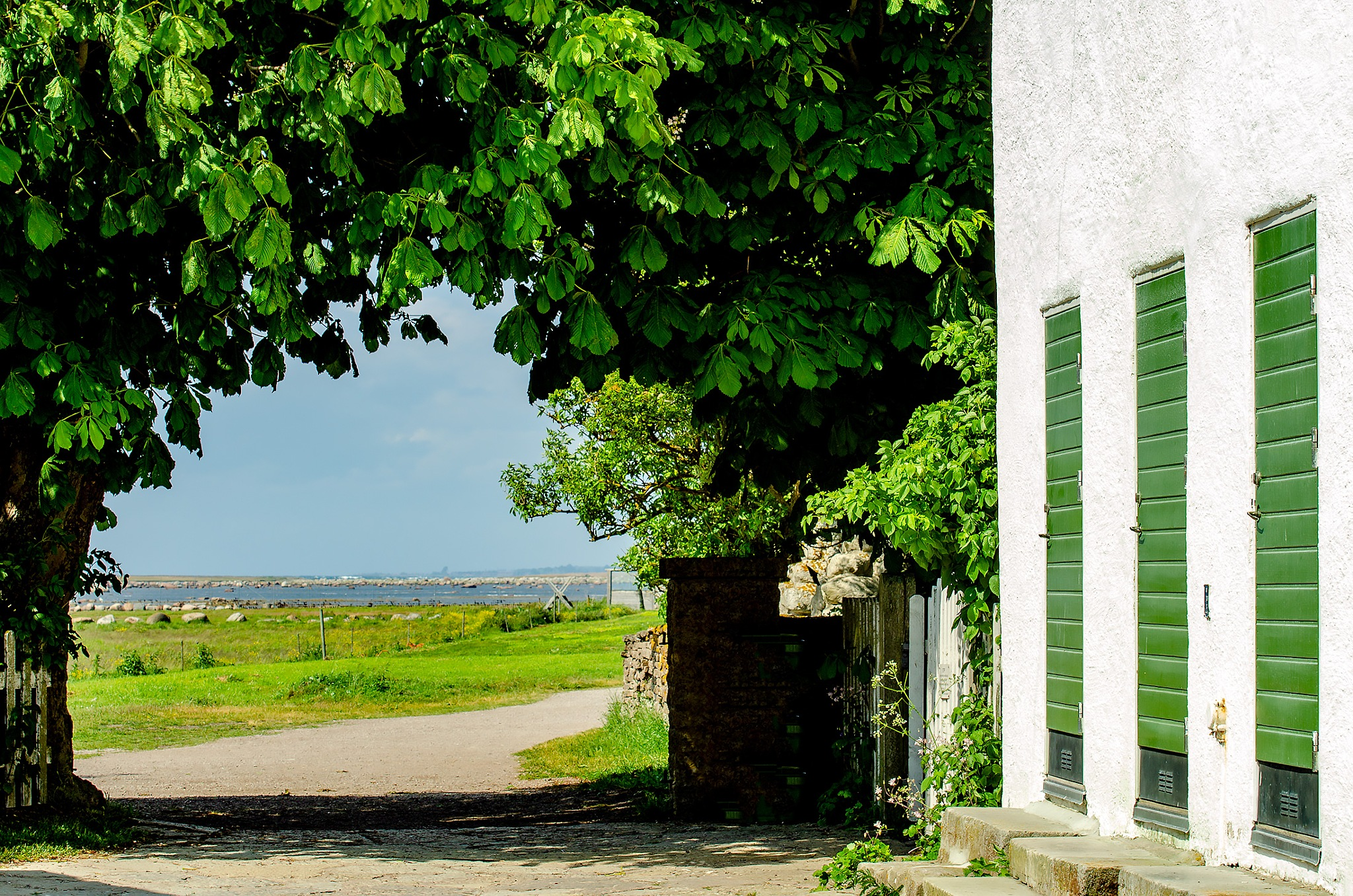 Romantic midsummer on Swedish island by MaritaToftgard