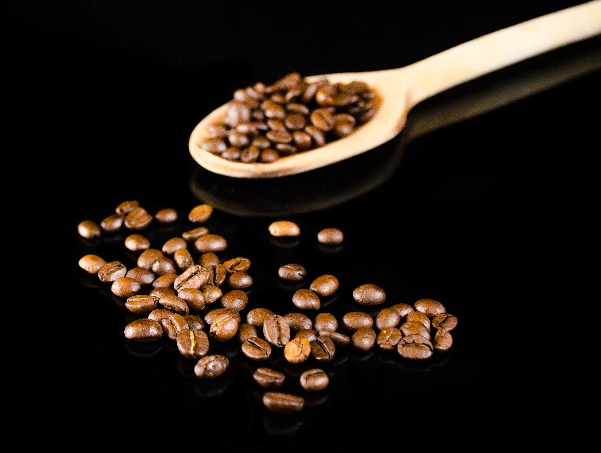 Coffee seads by marokkyprianou