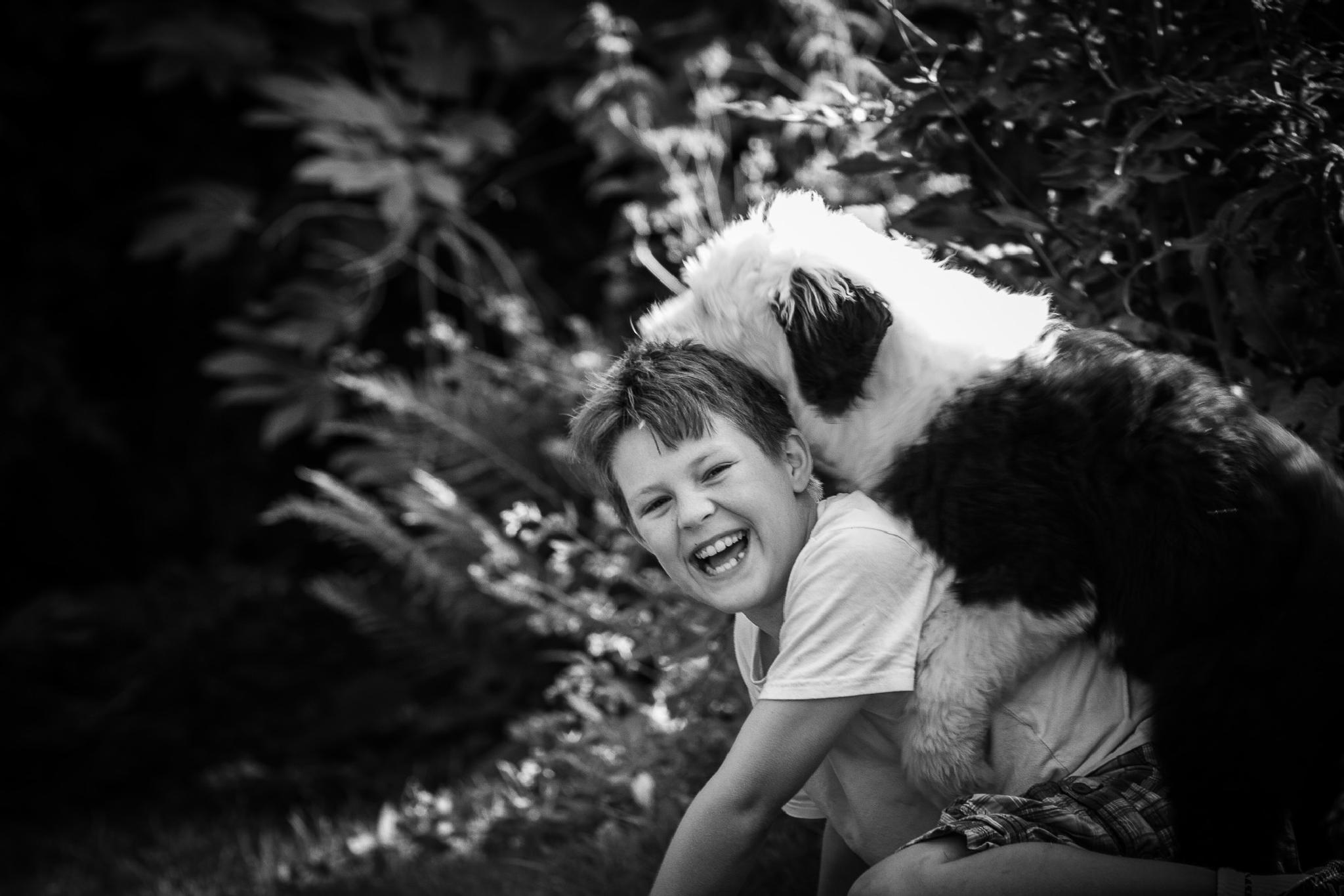 Old English Sheepdog Puppy & Boy by Brooks DeCillia