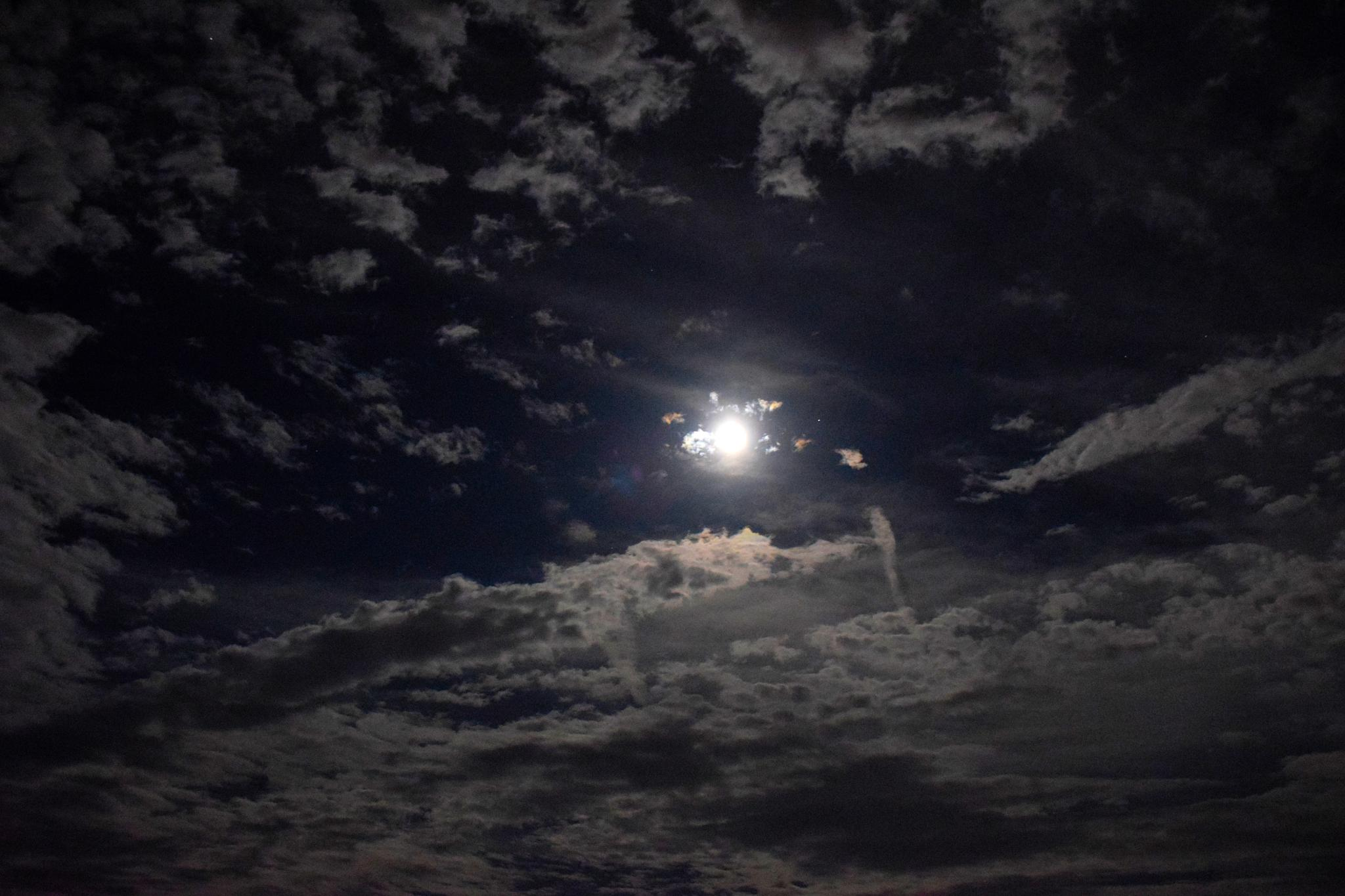 Photo in Nature #fullmoon #sky #clouds