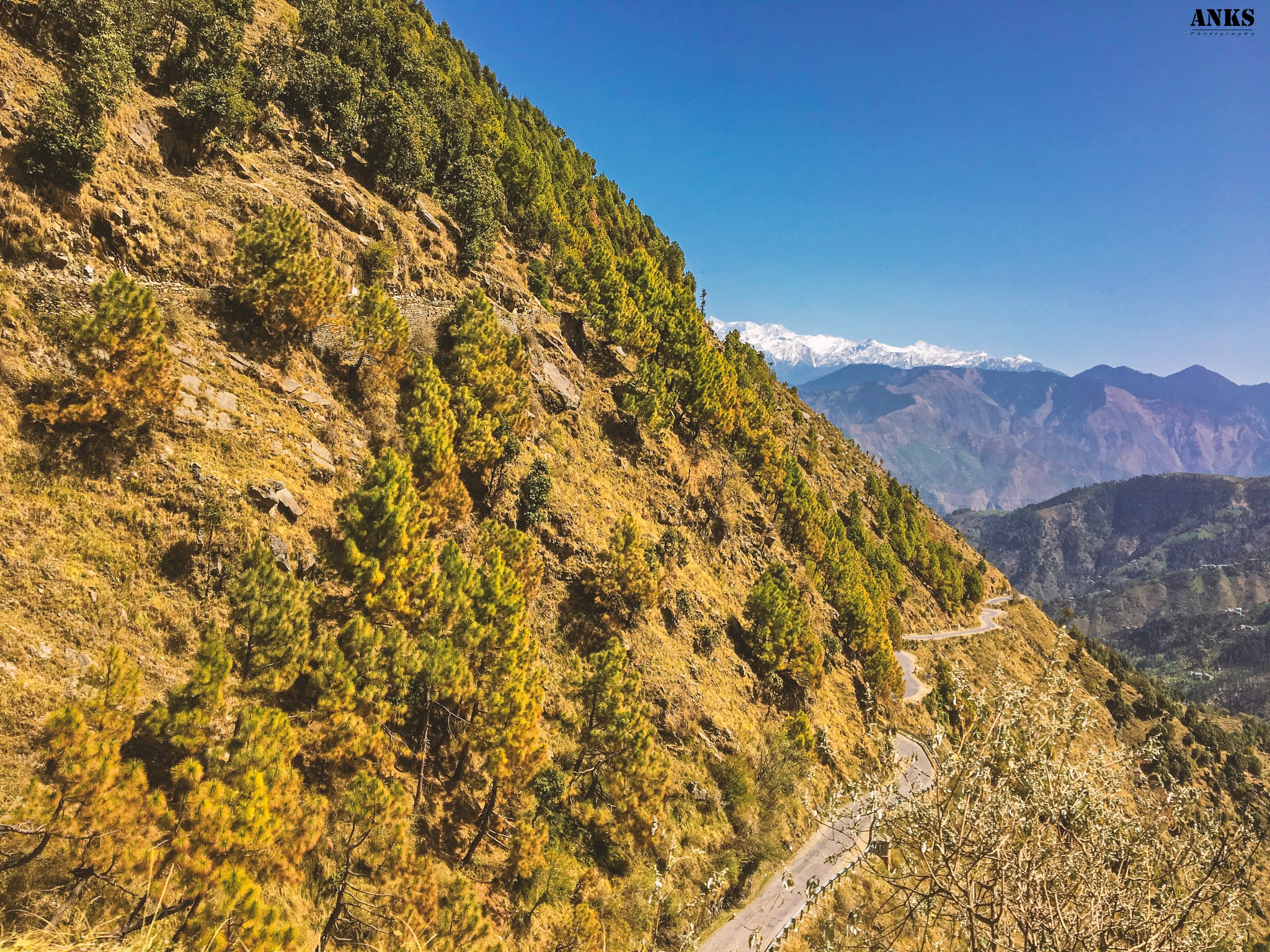 Photo in Travel #mountains #mountain #himachal #hp #himachal pradesh #india #indian mountains #nature #natural #nature lovers #way #itsmeankushkumar #photographer #photography #anksphotography #photobyanks #dare_to_click #white #green #blue #road #chamba #traveller #explore #travel #mobile click #iphone #apple #iphone6s