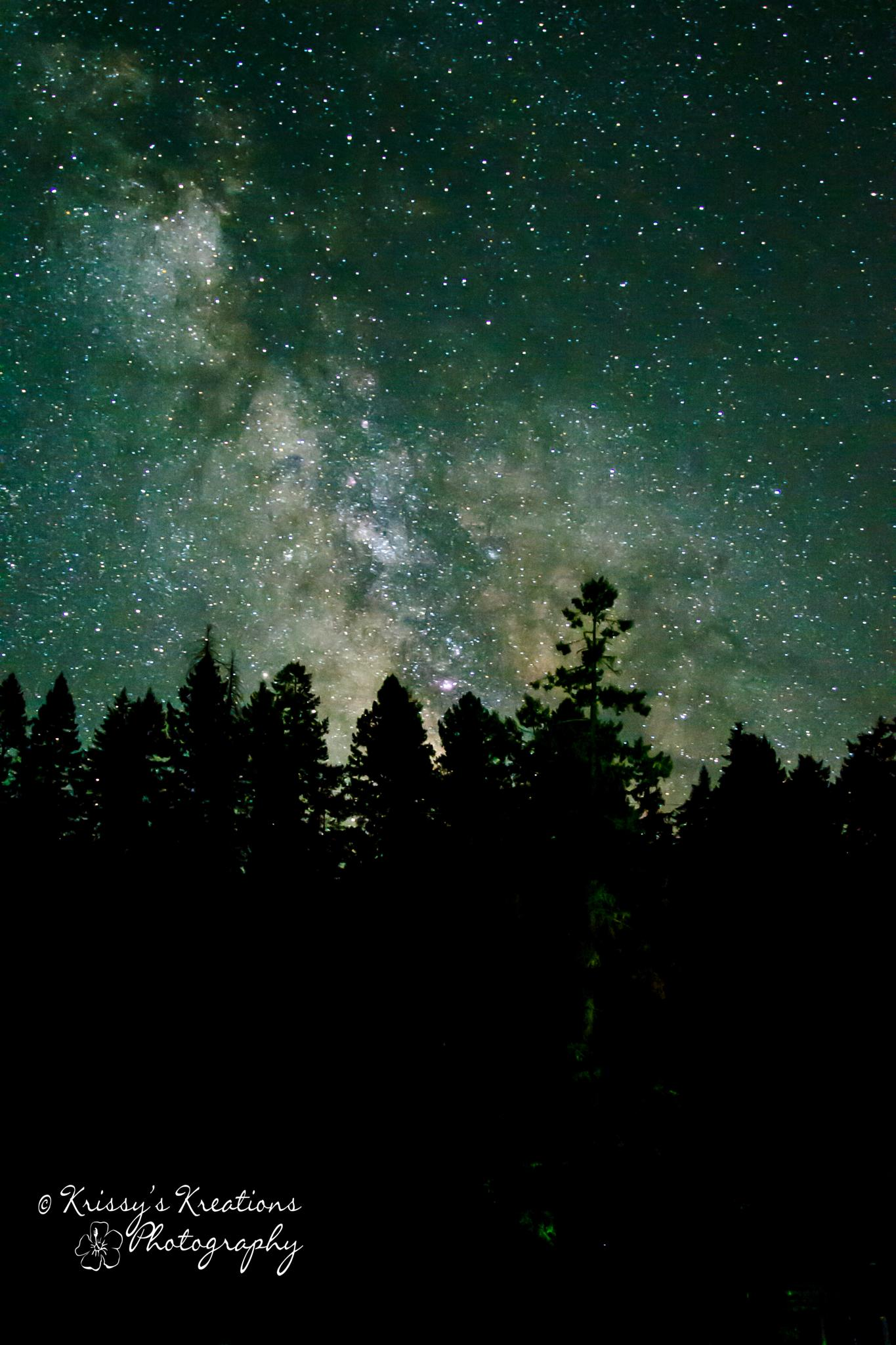 Idleyld Park Milky Way by Krissy's Kreations Photography