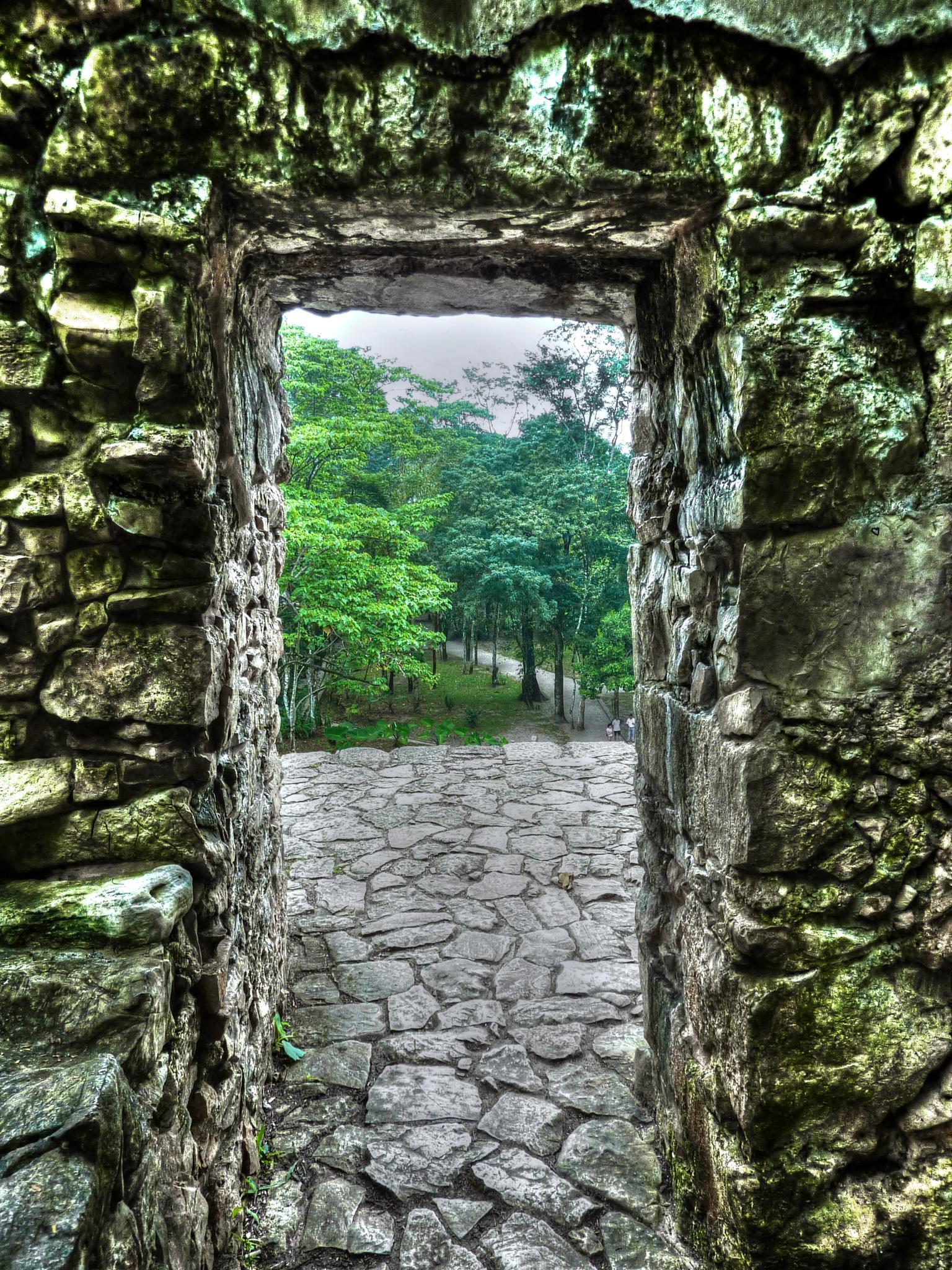 Palenque View 1 by Susan M. O'Brien