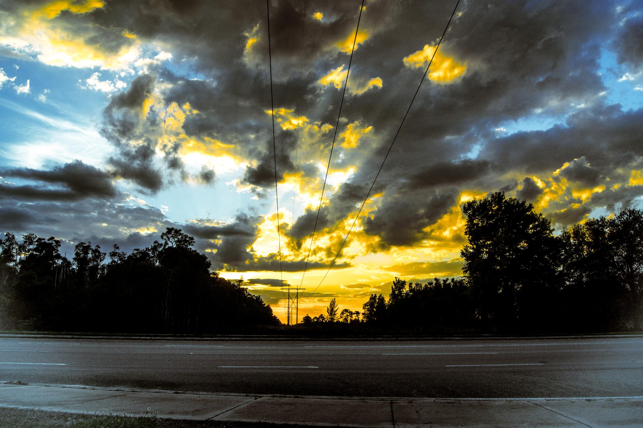 Sunset Lines by Michael C Frizzell