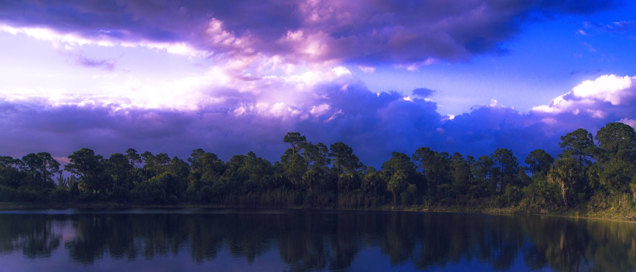 Florida Outdoors by Michael C Frizzell