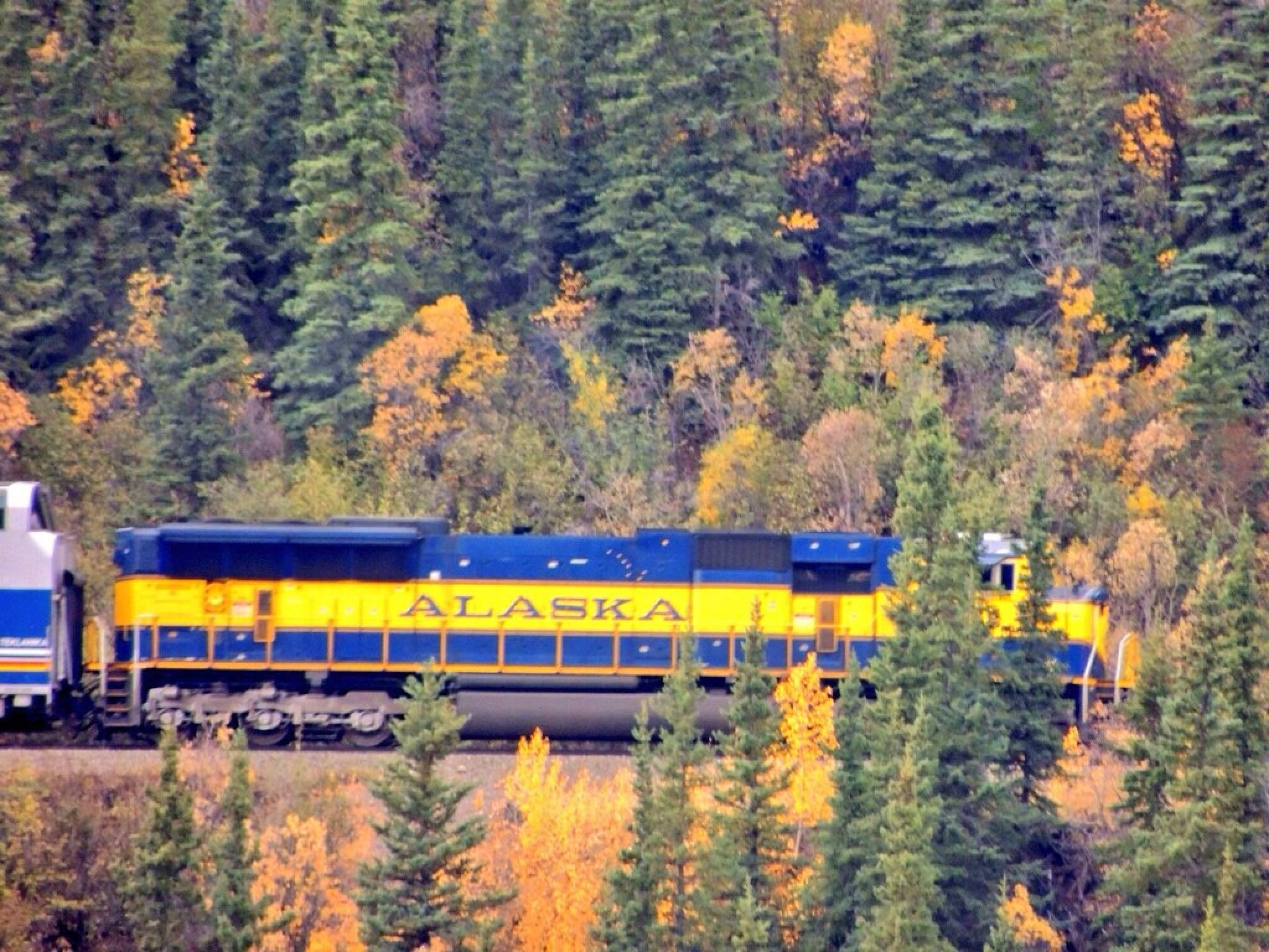 Alaska Railroad by RockyTopSkiBum