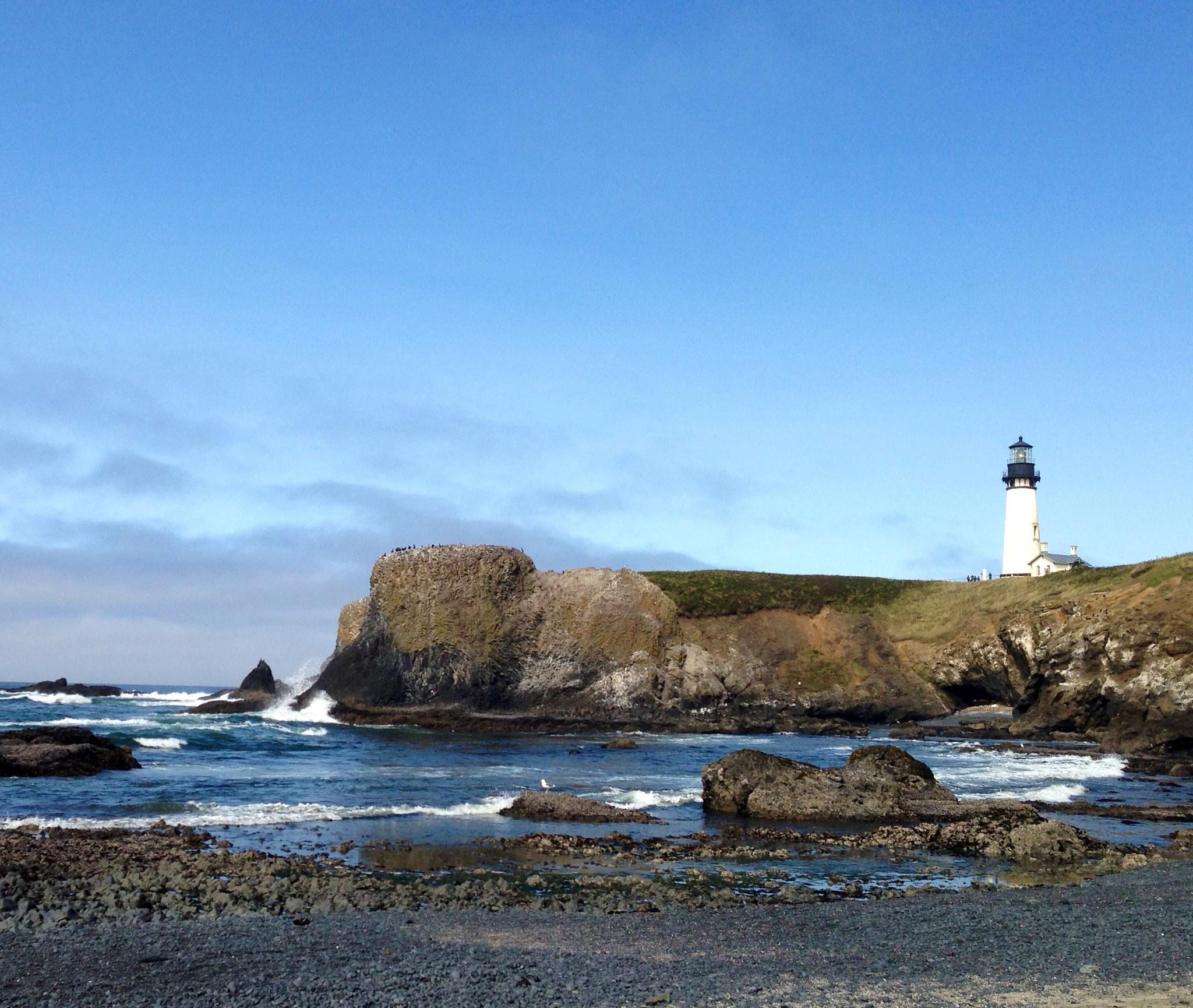 Yaquina Head Lighthouse  by RockyTopSkiBum
