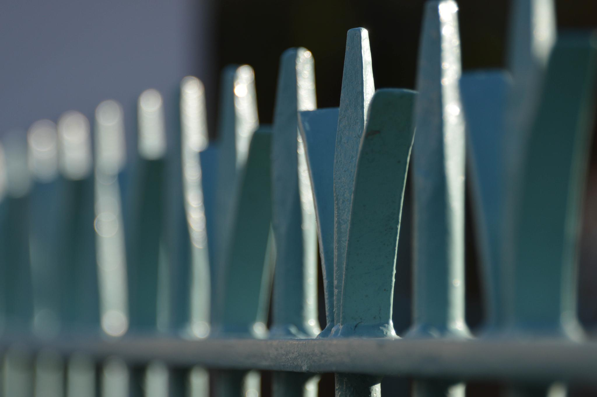 Iron Fence by dickon