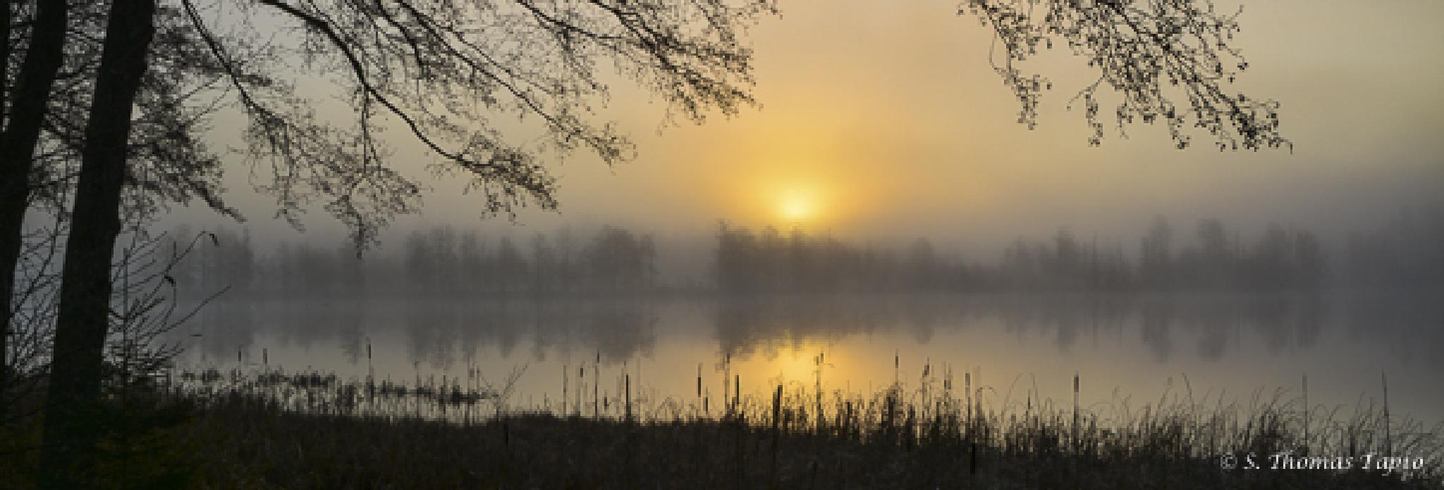 Morning haze over river Helge by Thomas Tapio