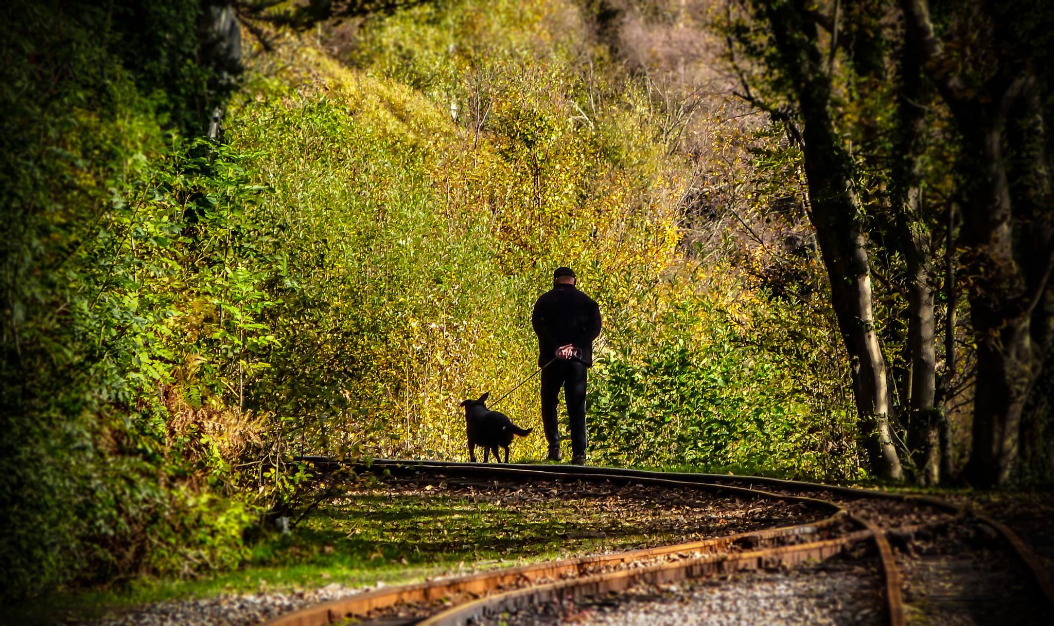 Walking the dog  by ILoveThatPhoto.co.uk