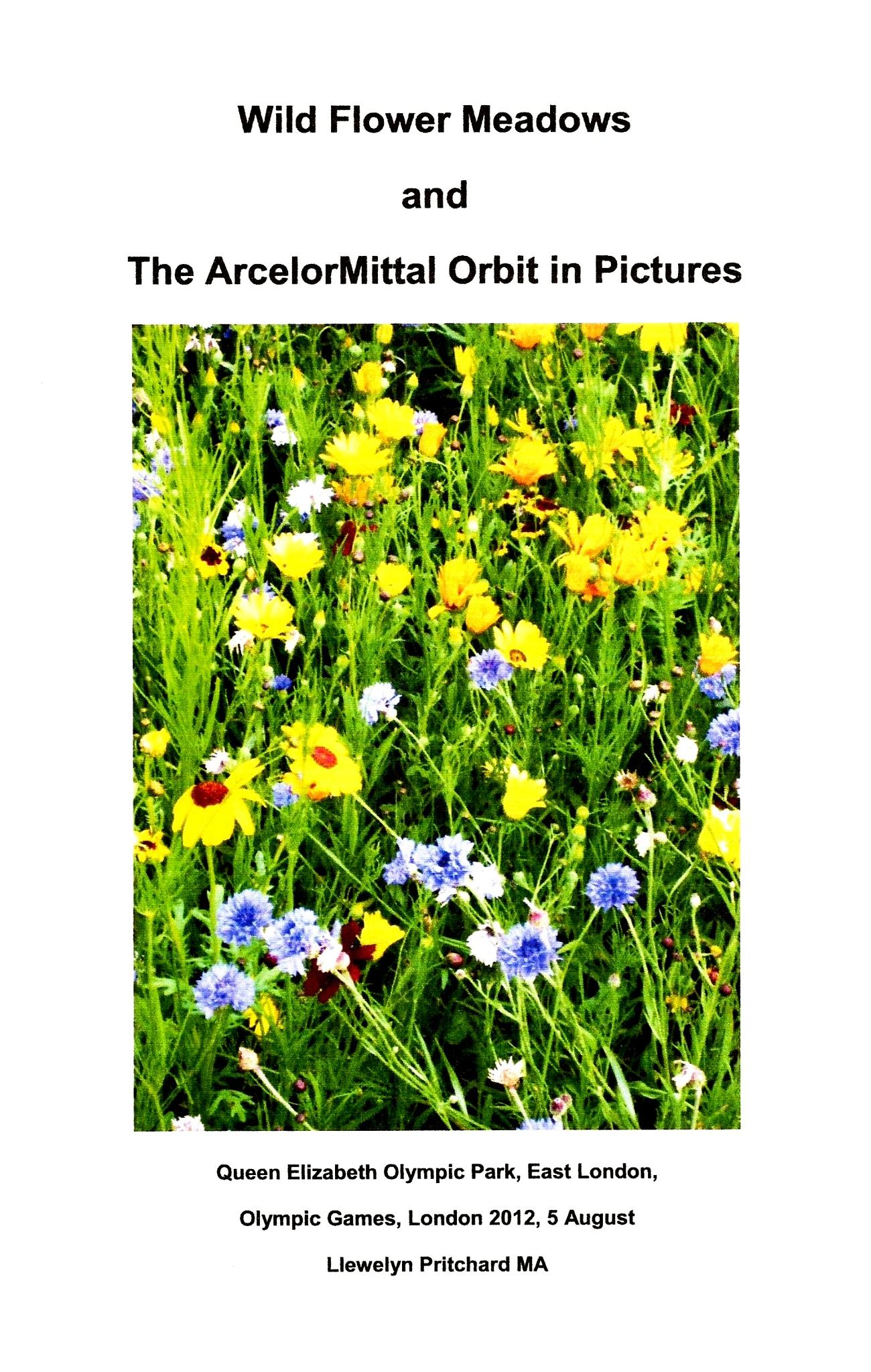 Wild Flower Meadows and The ArcelorMittal Orbit in Pictures, Queen Elizabeth Olympic Park, East Lond by Llewelyn Pritchard