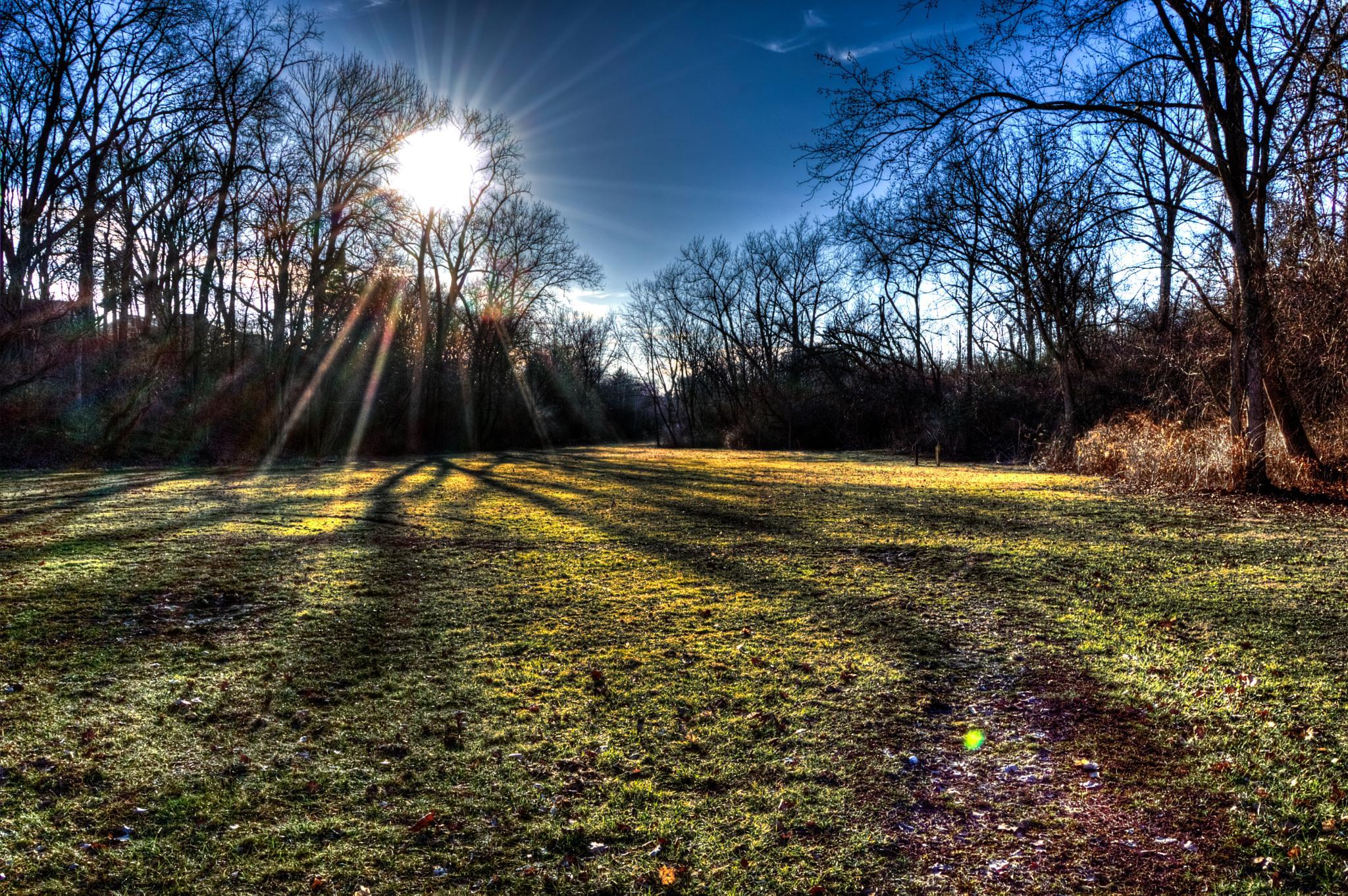 Park Field by montyspapa