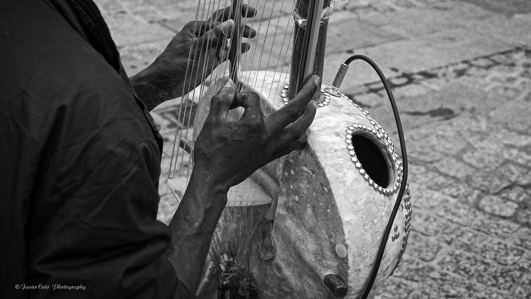 MUSICO CALLEJERO by Javiercoto