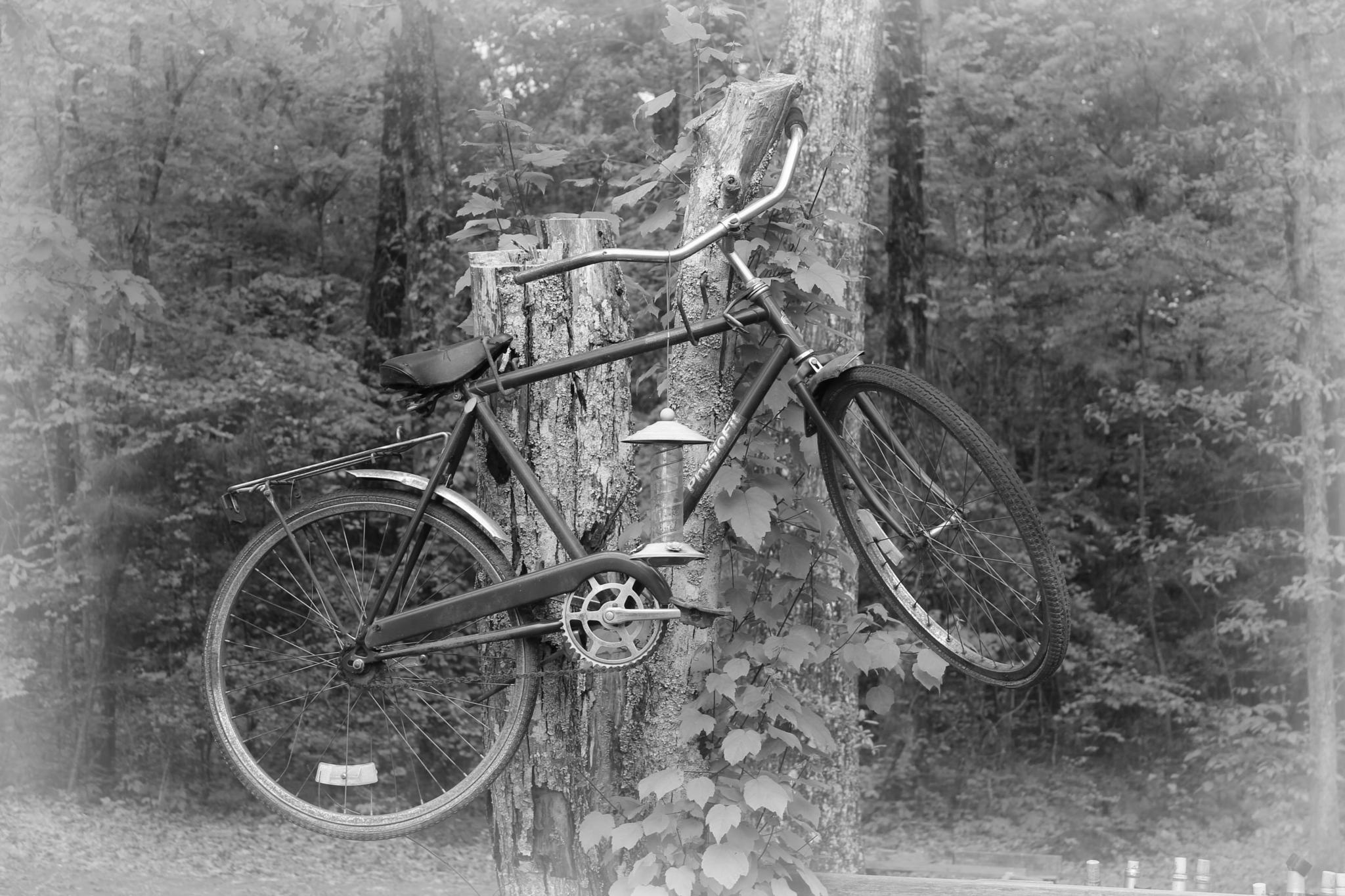 Last Ride by craig.turner.756