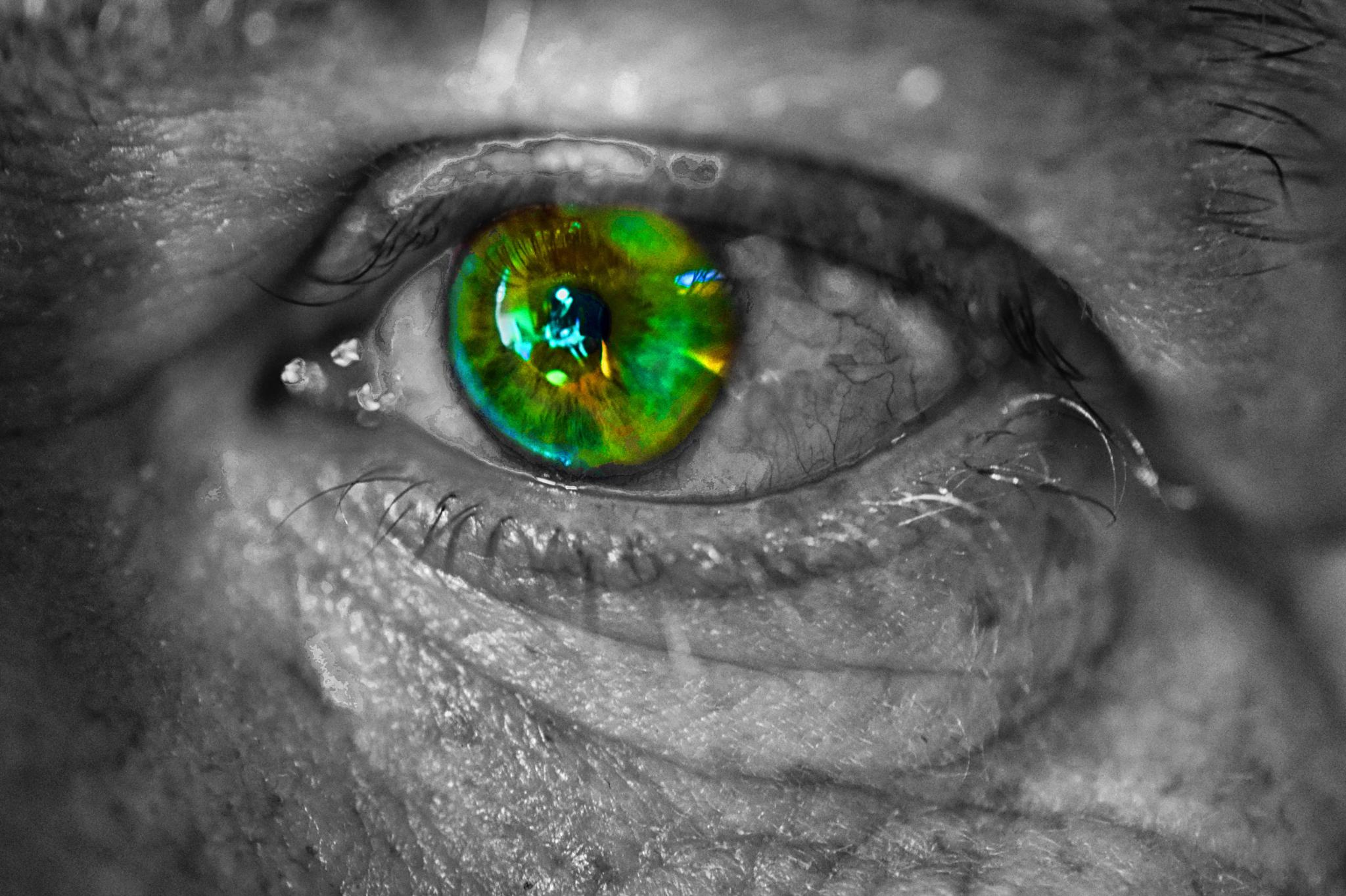 Close Up on Photographer's Eye by jhippisley