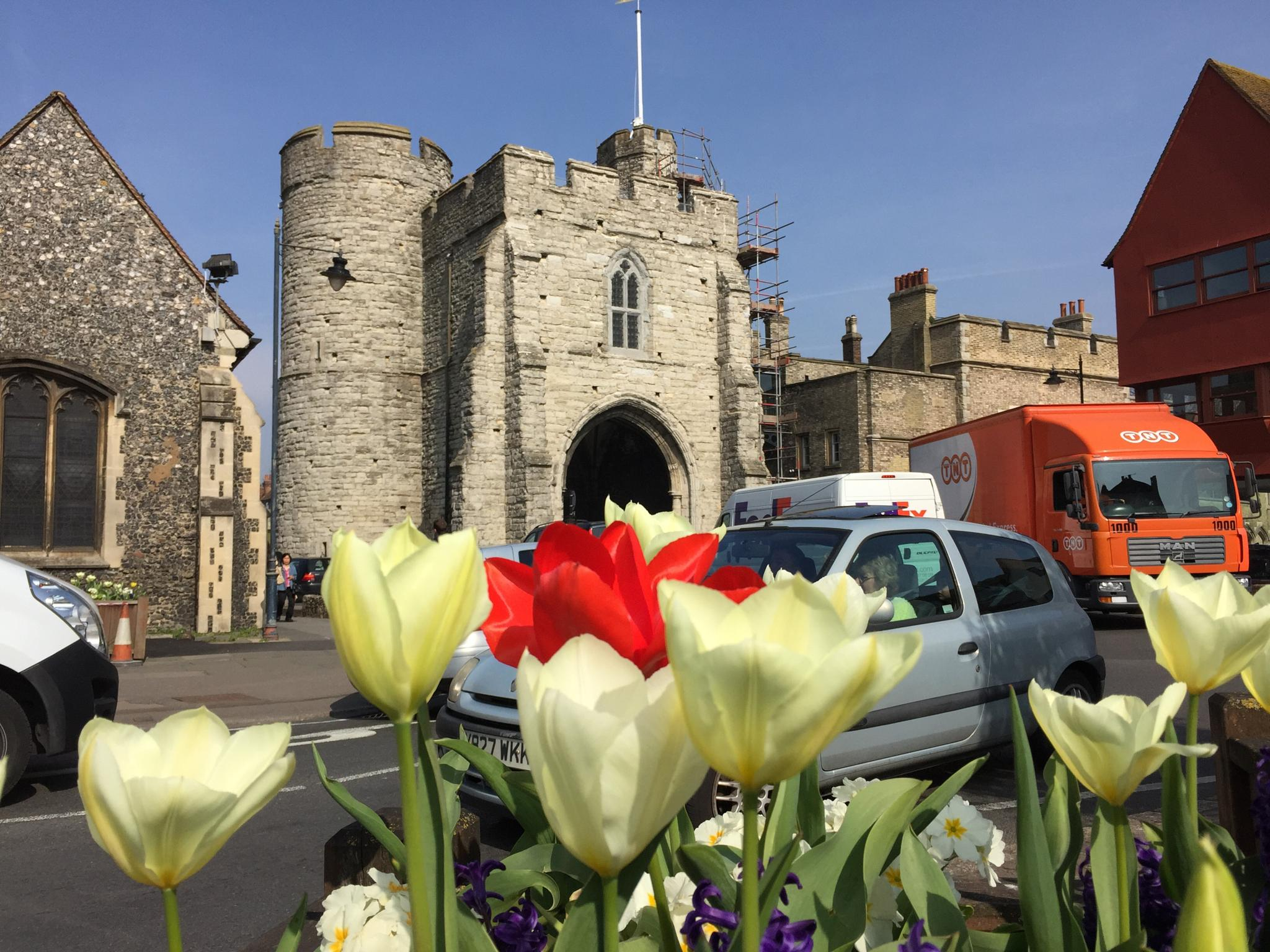 Towers & Traffic through Tulips by jhippisley