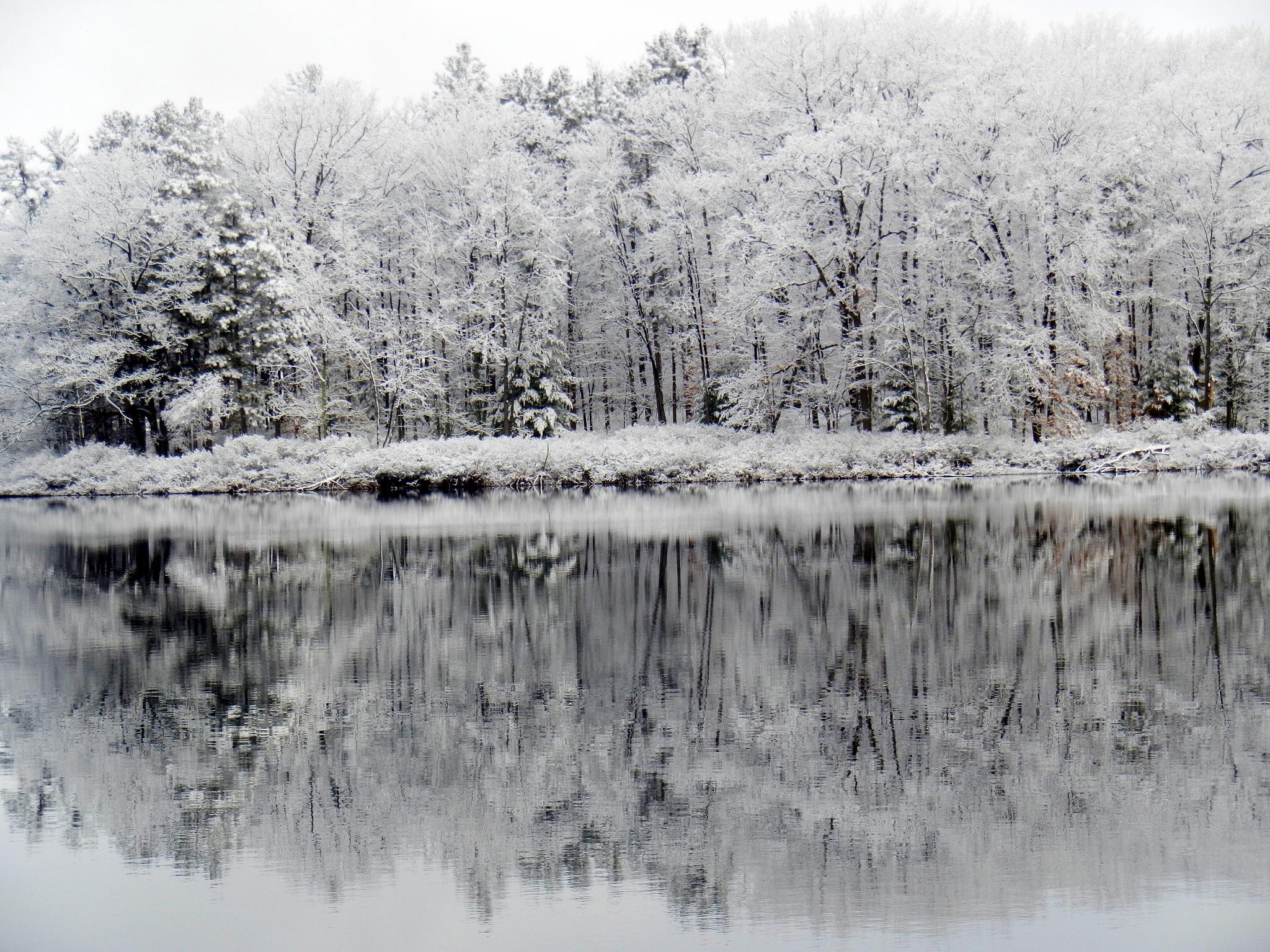 Spring Snow 3/31/15 by lori.dullinger