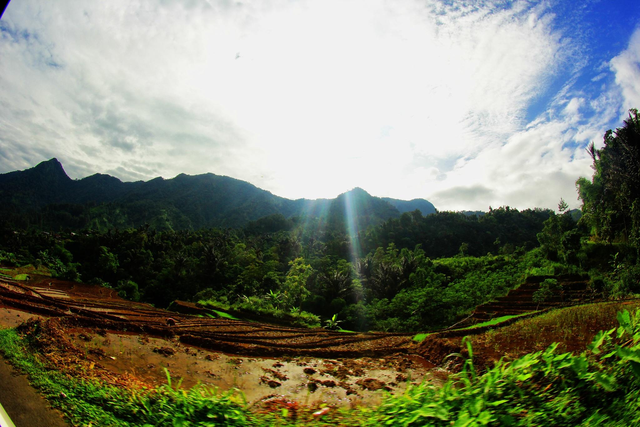 Petungkriyono, on the way by maharaniafifah