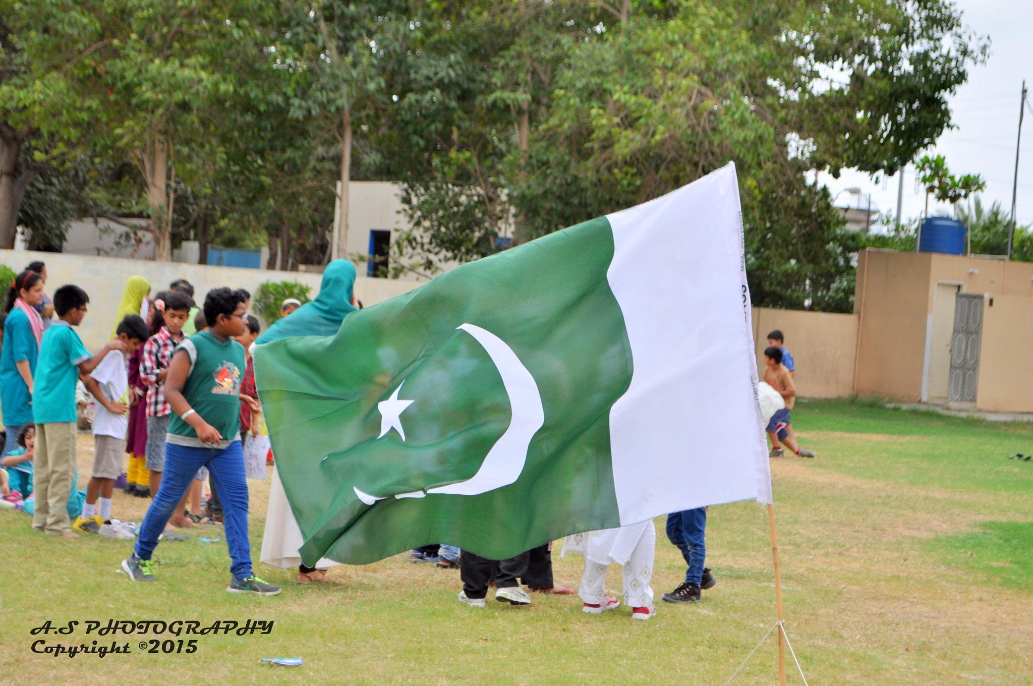 Pakistani Flag by Abdul Sami Ali