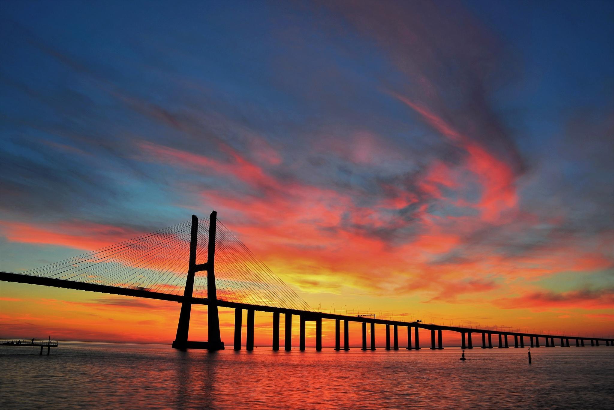 Bridge Vasco da Gama by Pedro Ferraz