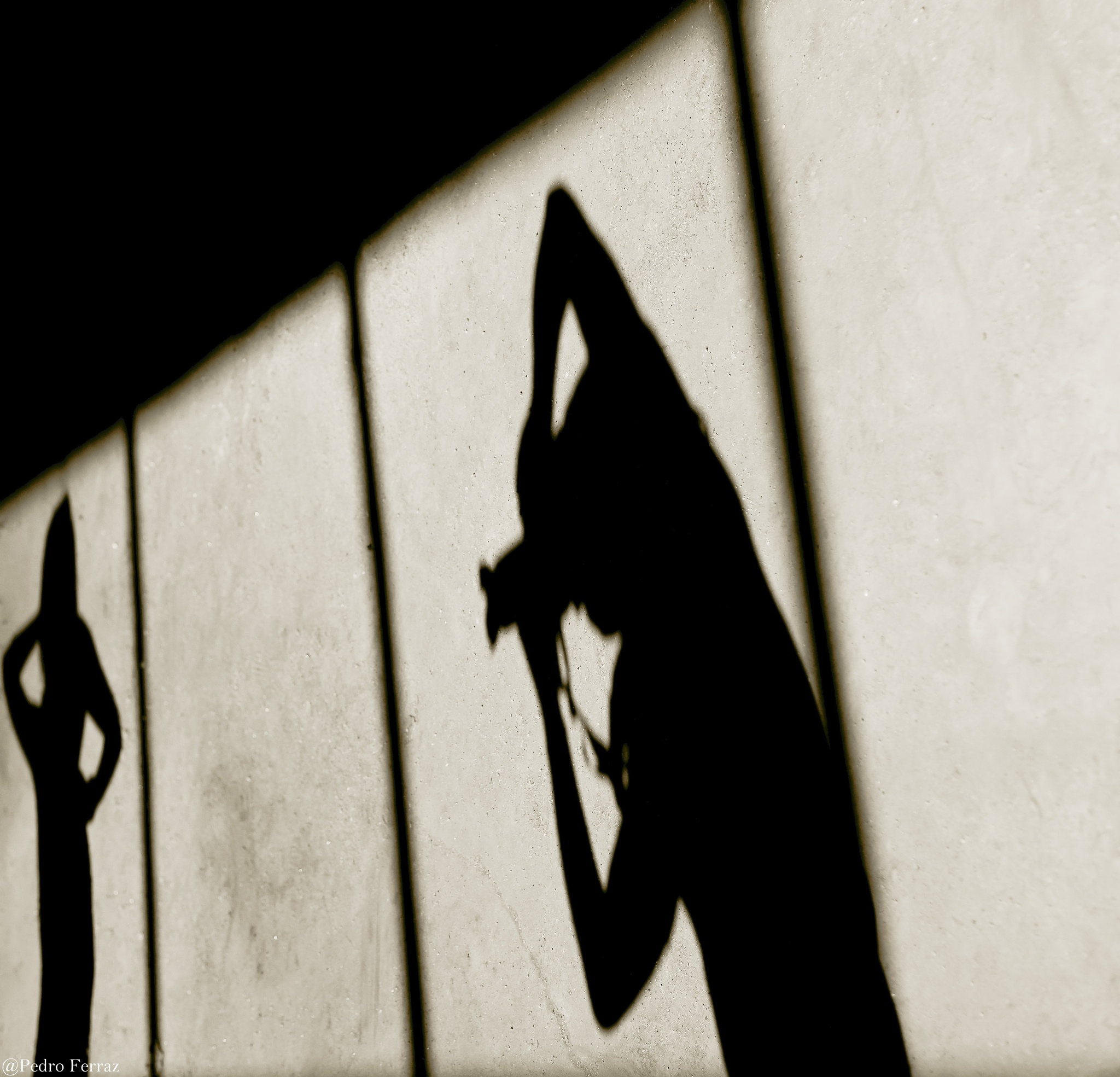 The photo window by Pedro Ferraz