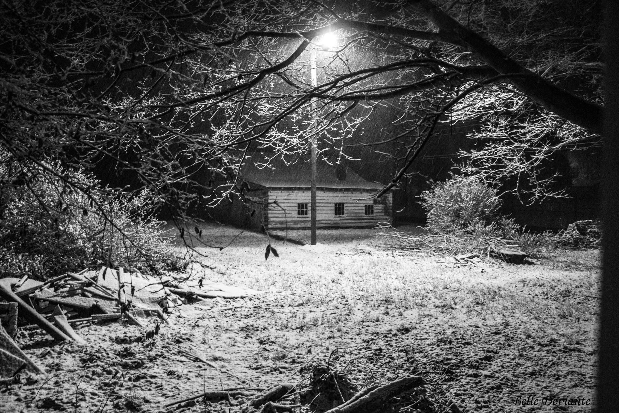 A Winters Tale by JanDavis336