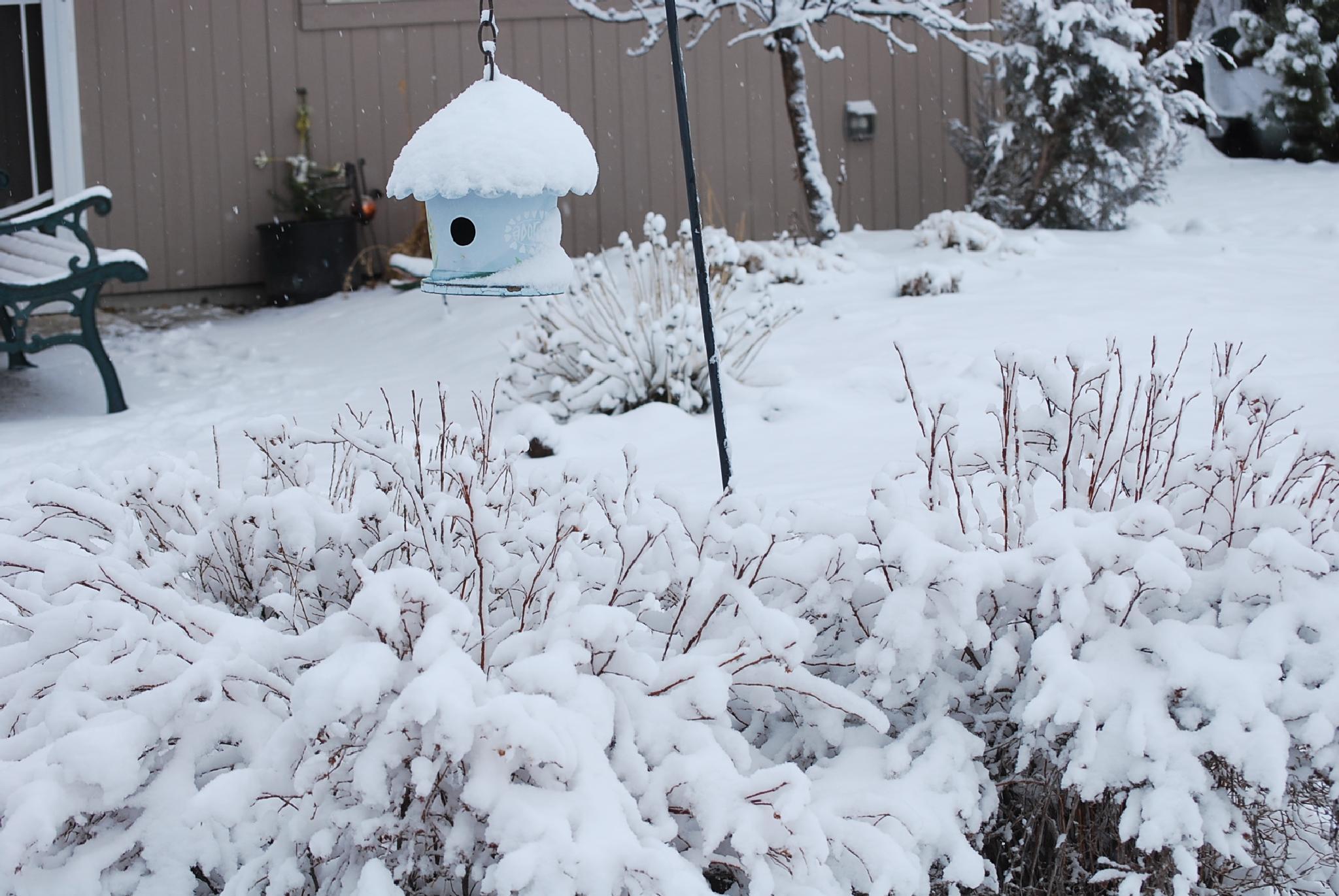 Heavy Snow by marilyn wirtz