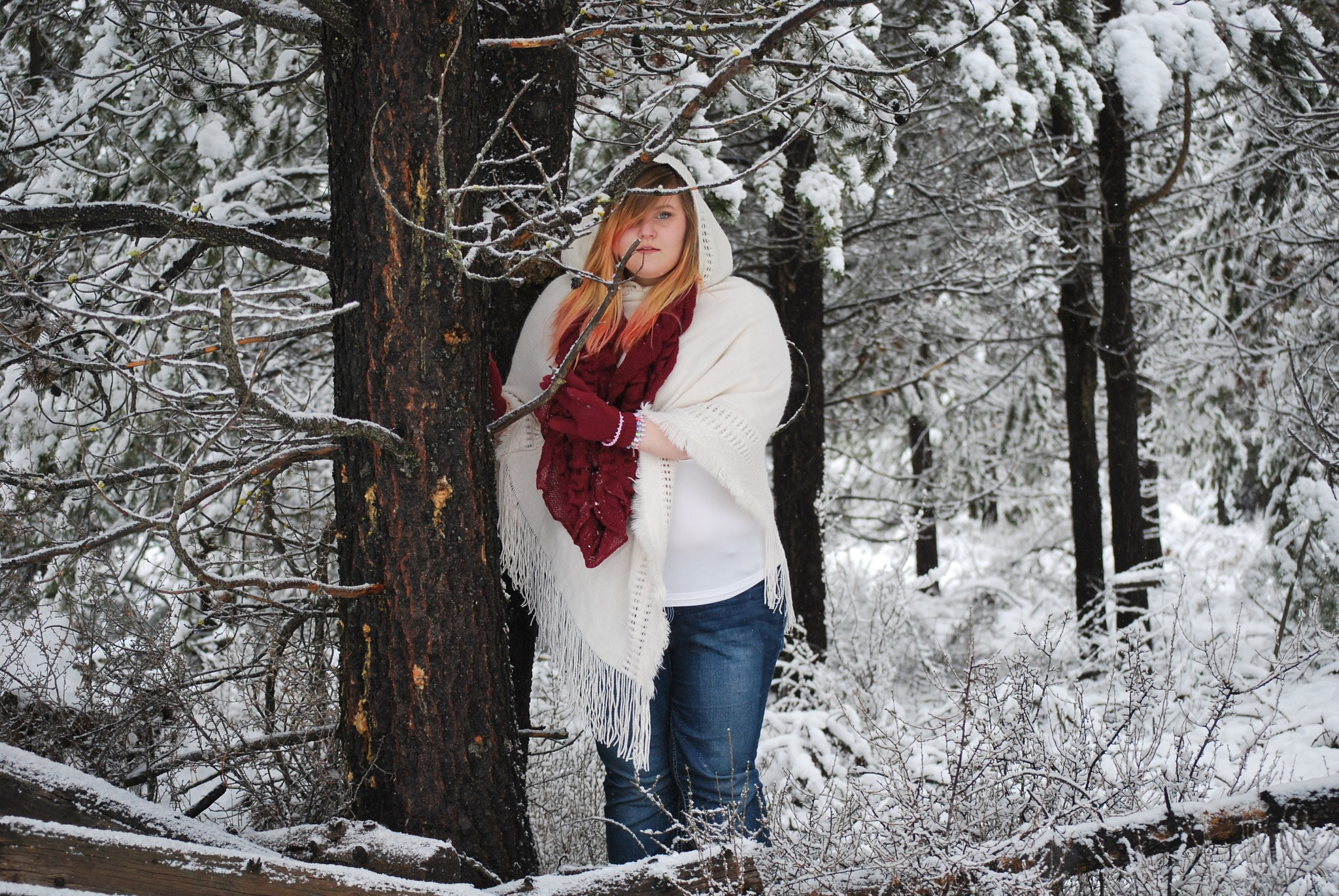 Snow all around by marilyn wirtz