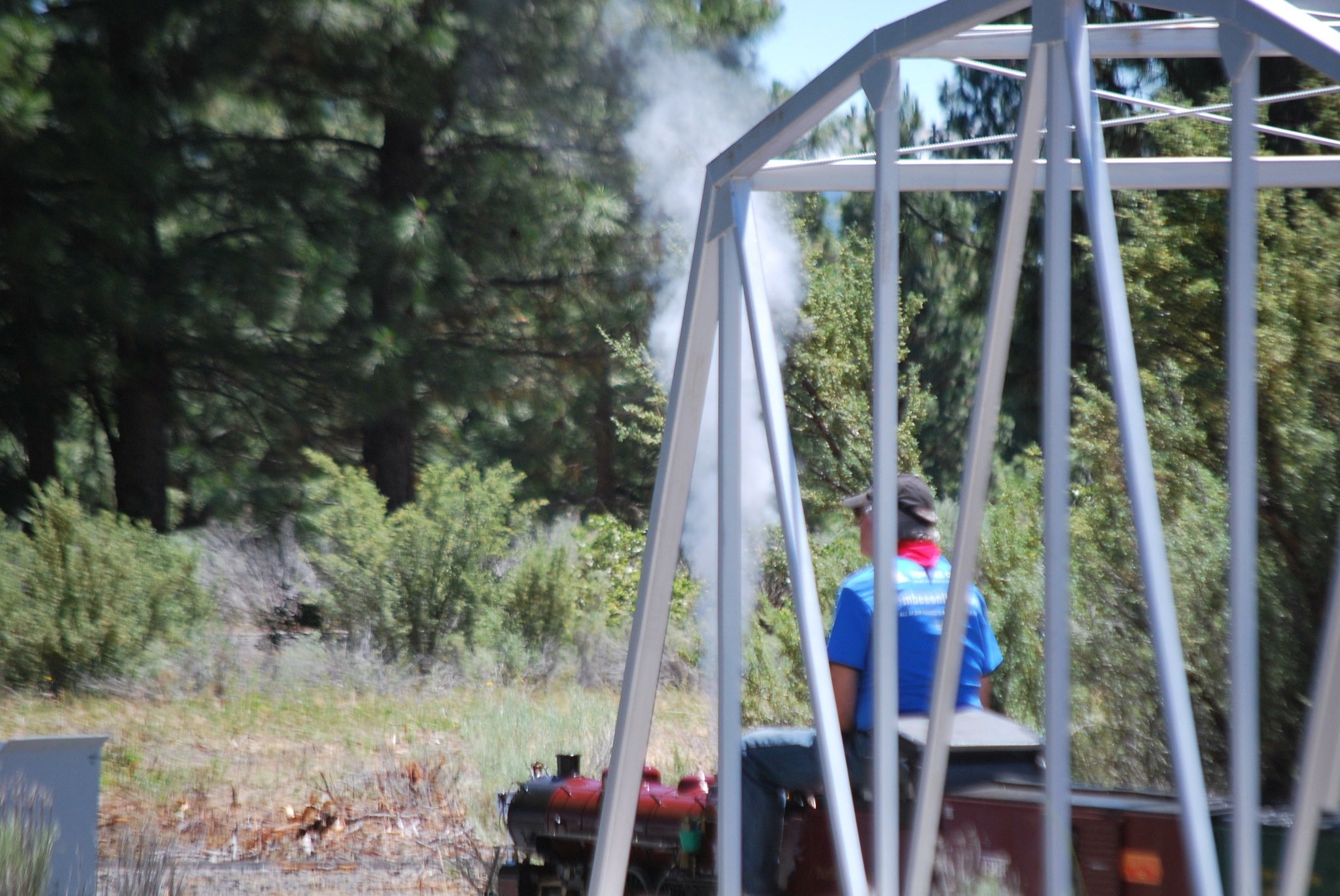 The steam Engine by marilyn wirtz