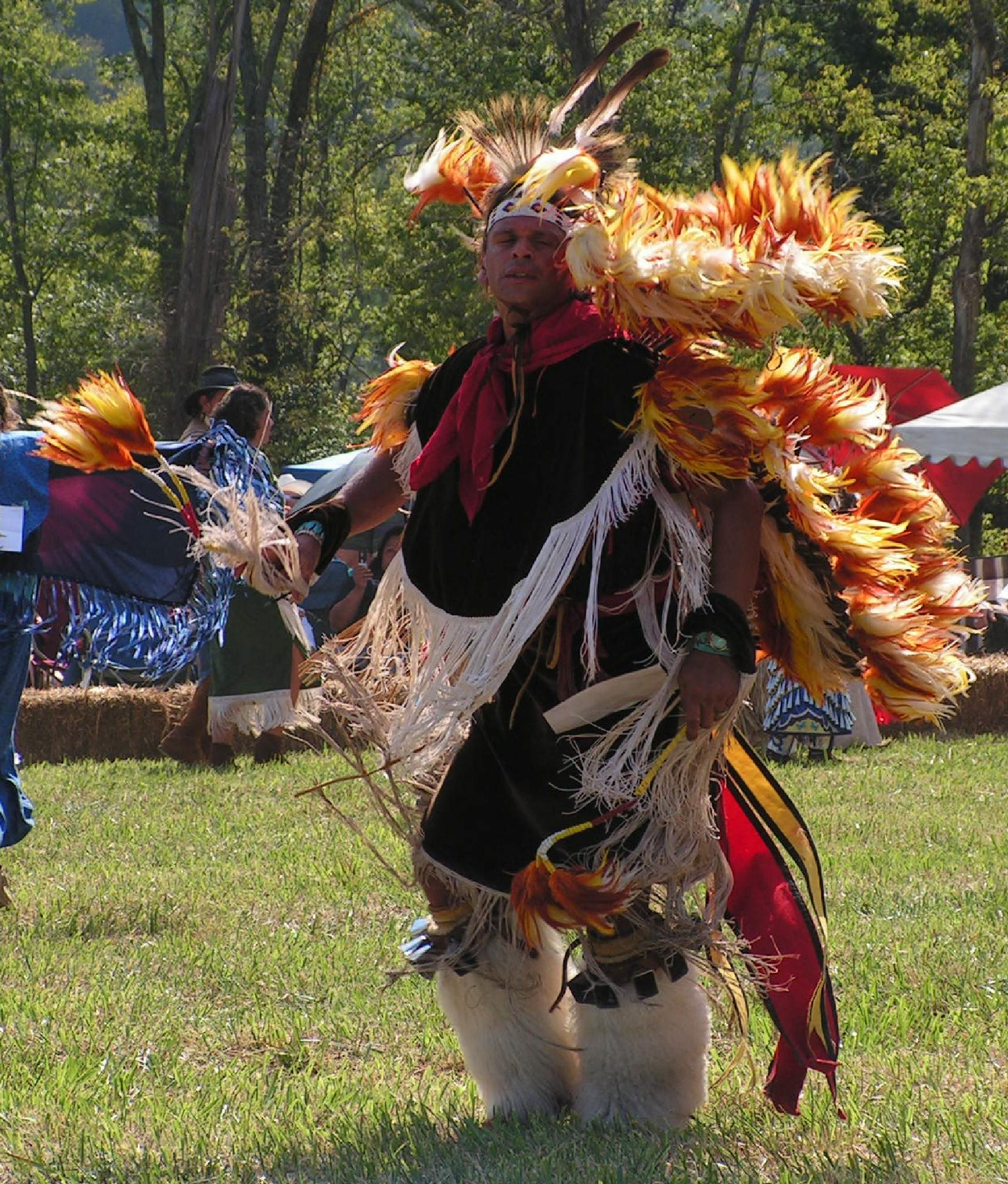 Leipers Fork Pow Wow by tinamferrell