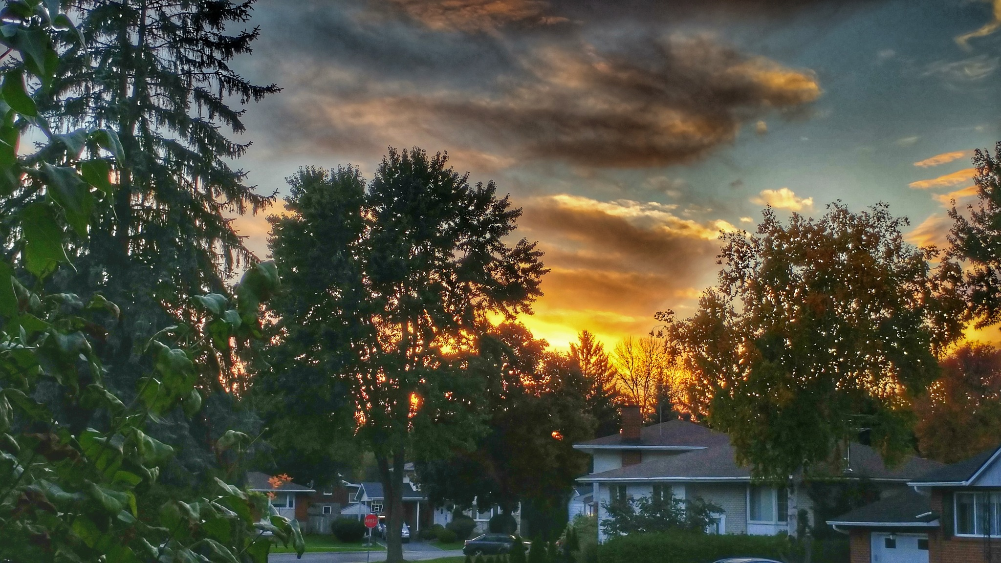 Suburban Sunset by Janice Bradford