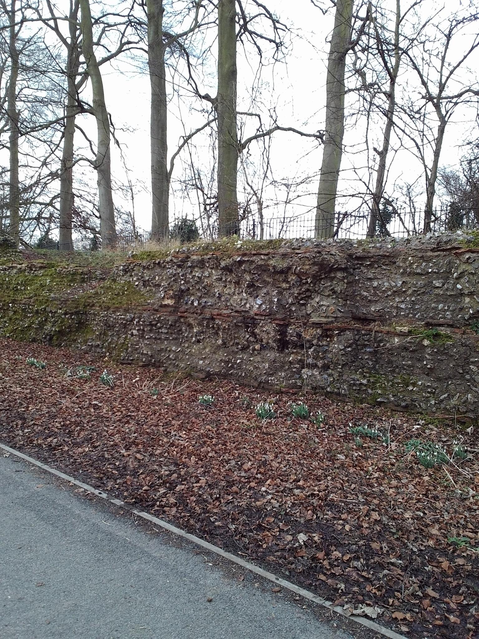Roman Wall by Janice Bradford