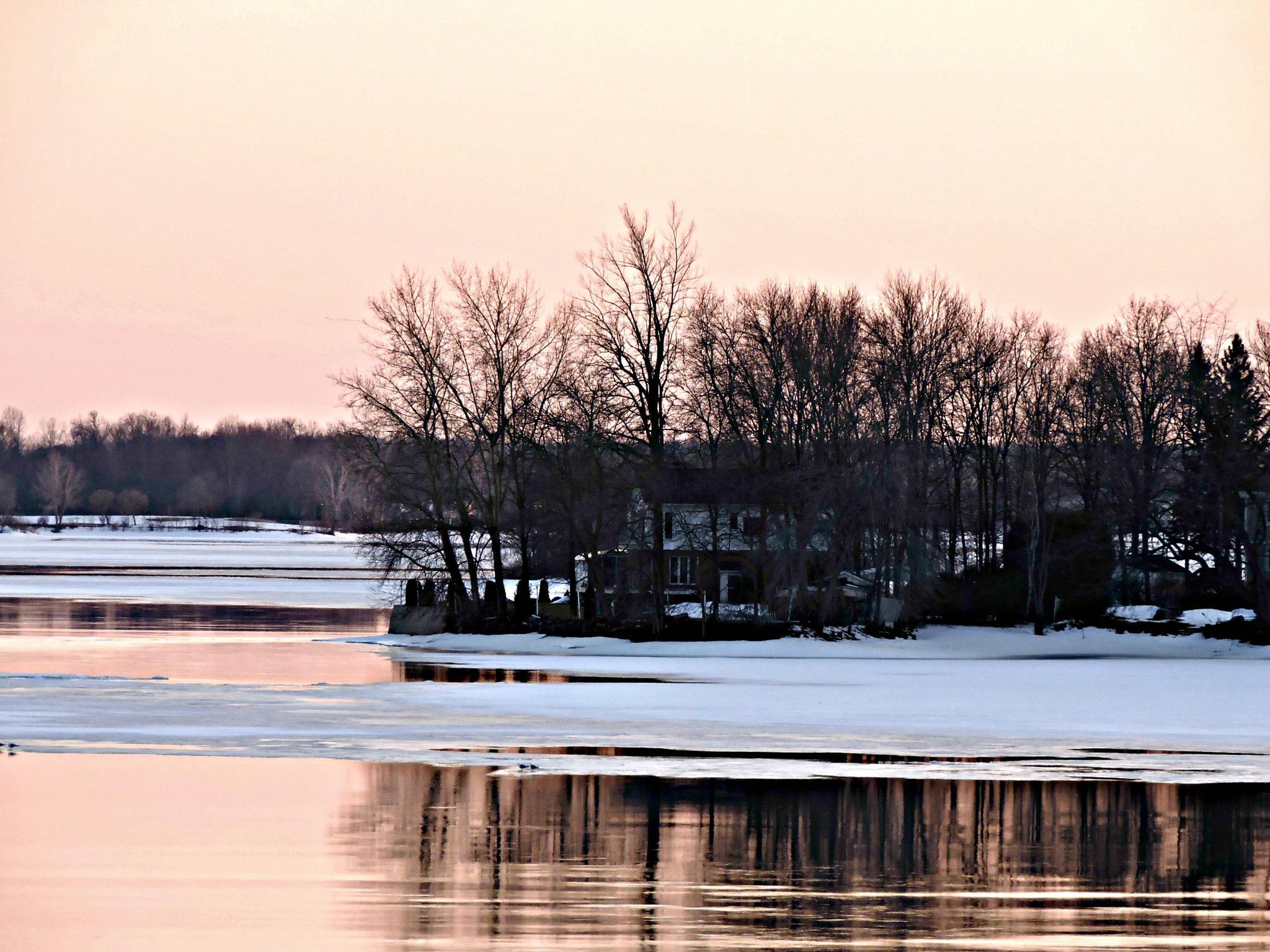Winters Eve by Janice Bradford