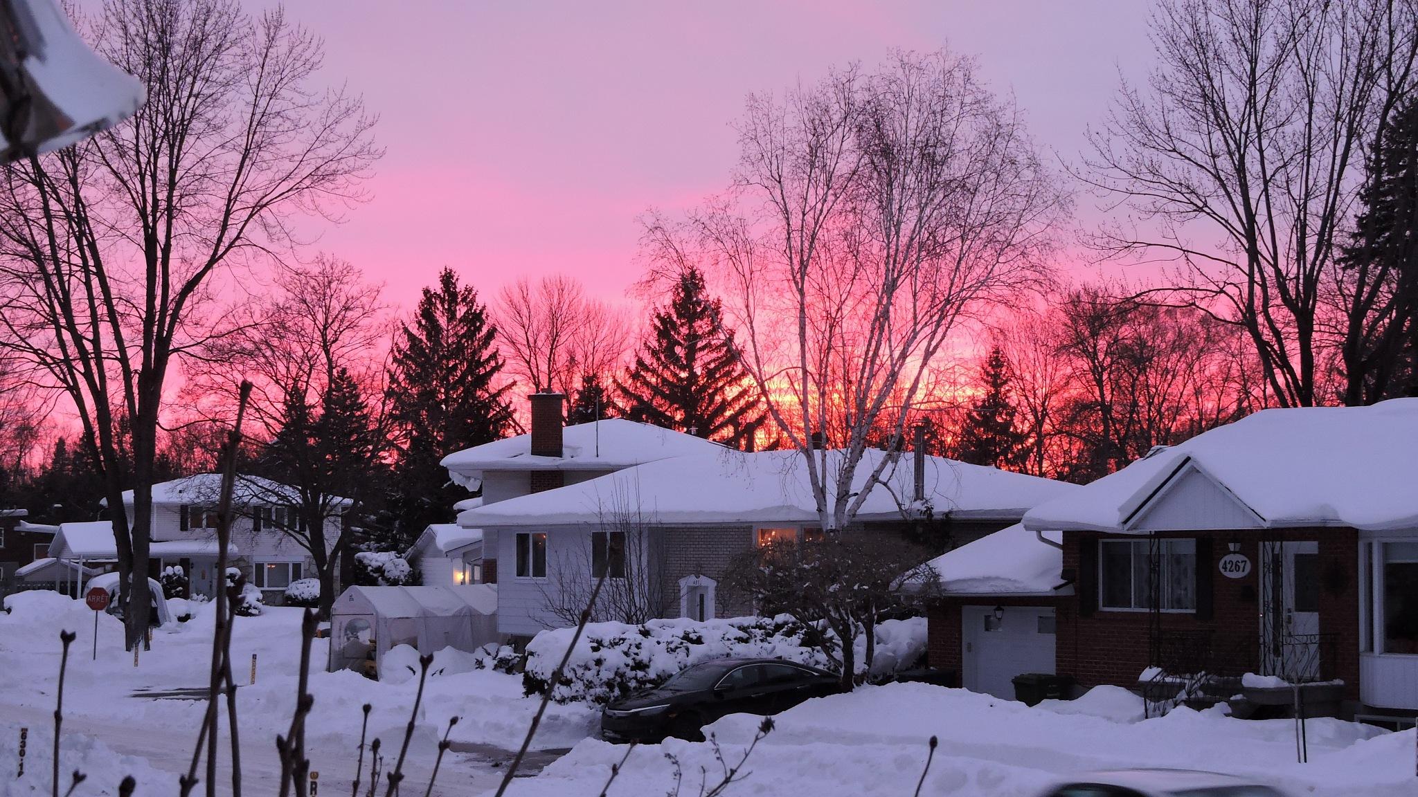 Winter sunset  by Janice Bradford
