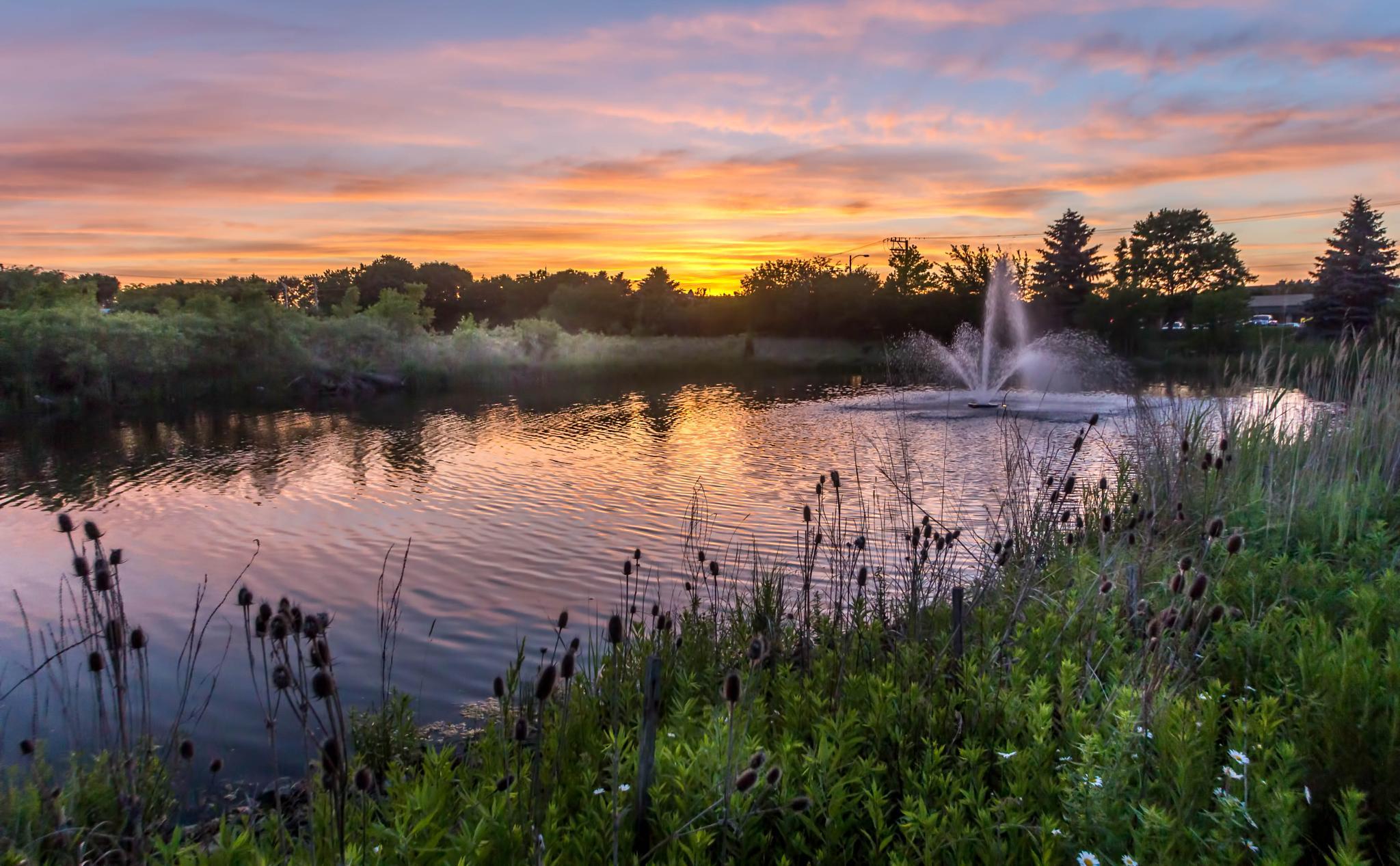 Lake in Lombard, IL USA by freezeframefotos