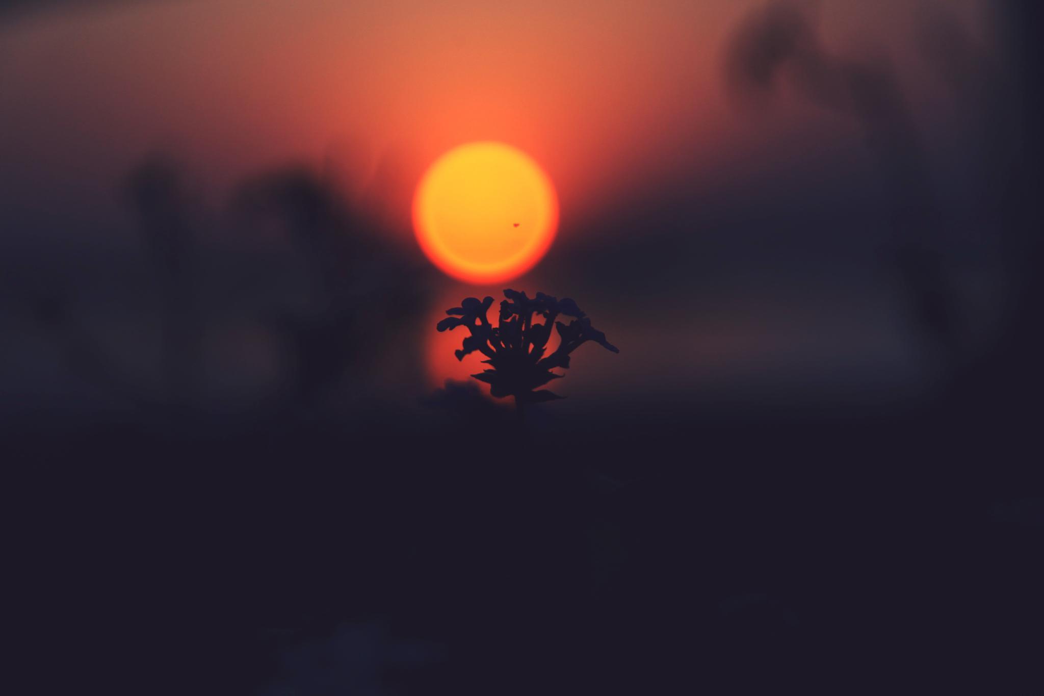 sun set  by Valivulla baig
