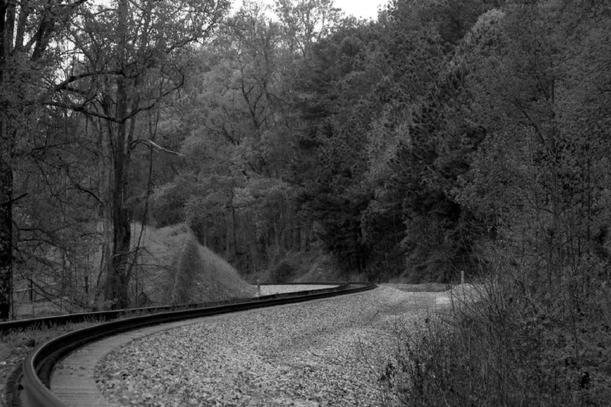Georgia railroad by Nancy Kenney