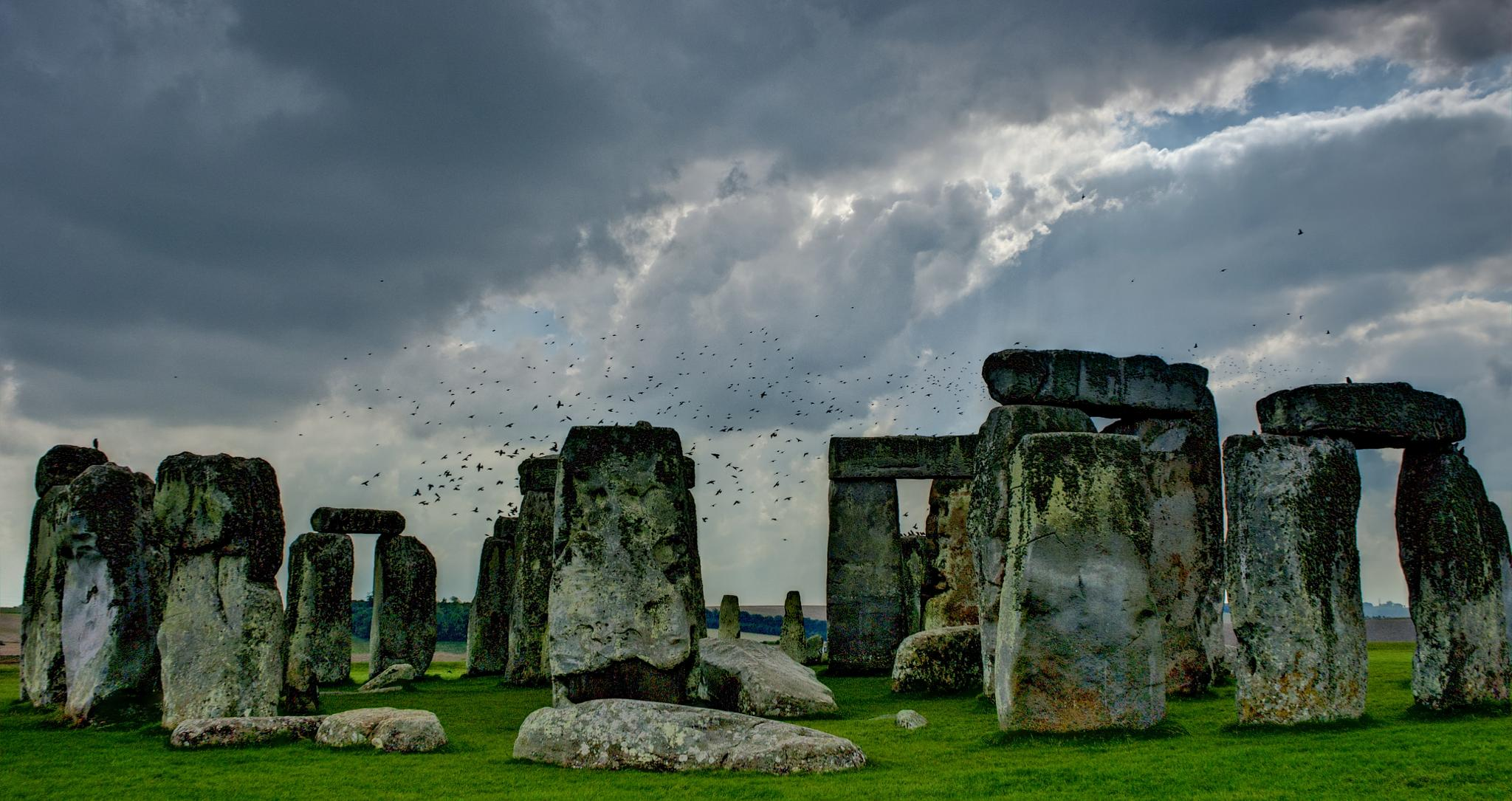 Birds of Stonehenge by Todd Edson
