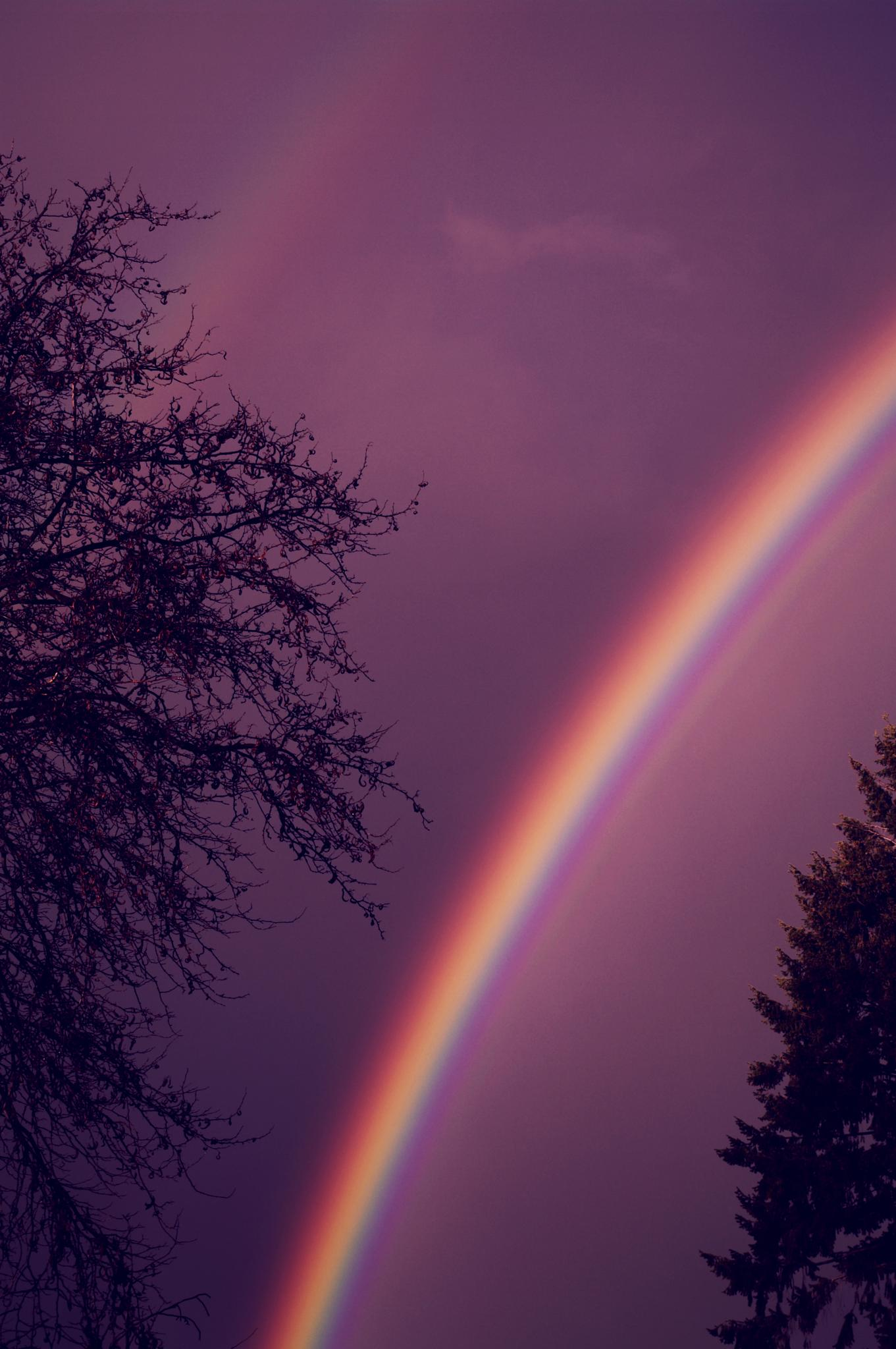 We ALL deserve a double rainbow! :) by jennifer.holmes.357