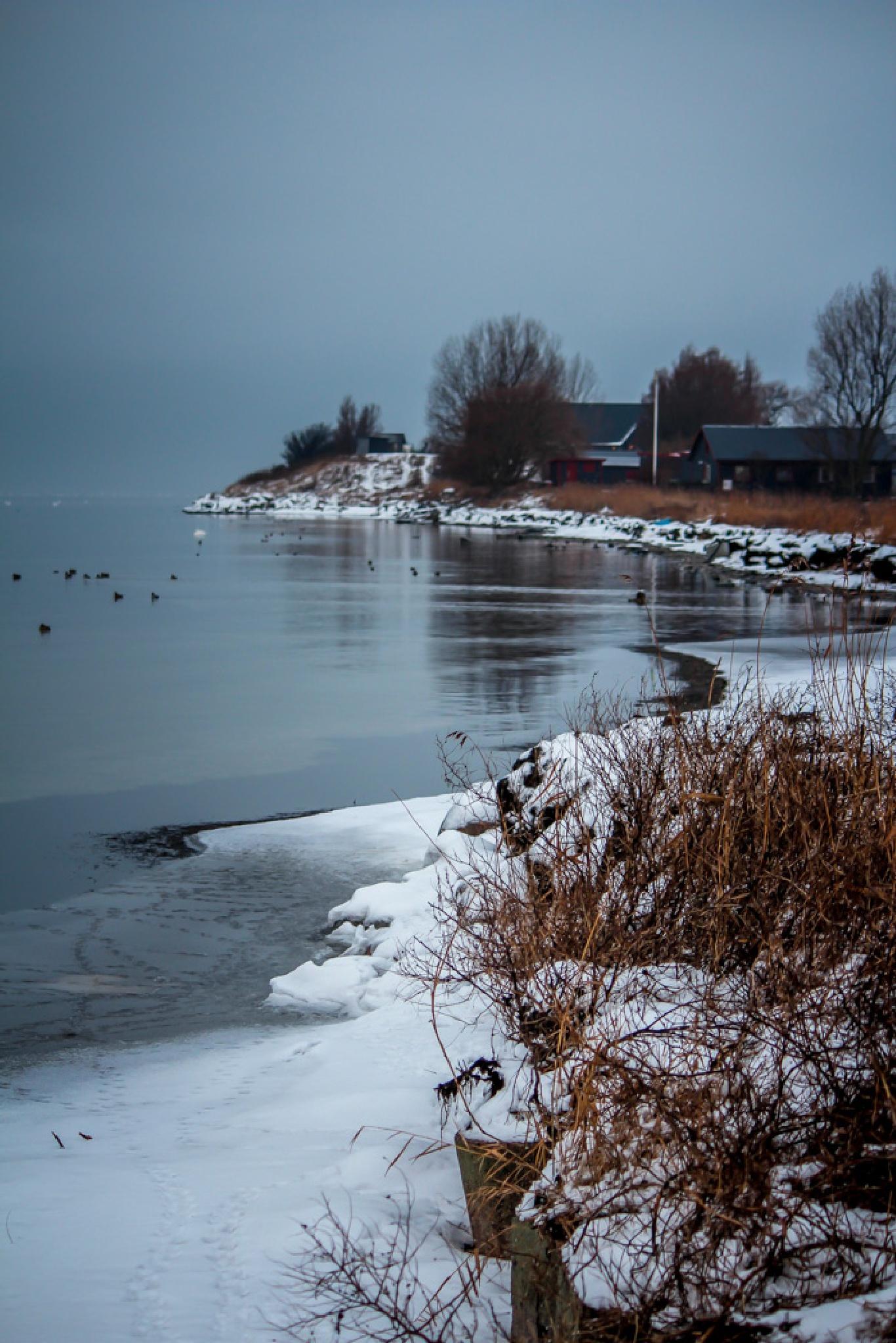 Wintery coastline by barbro.hansson.9