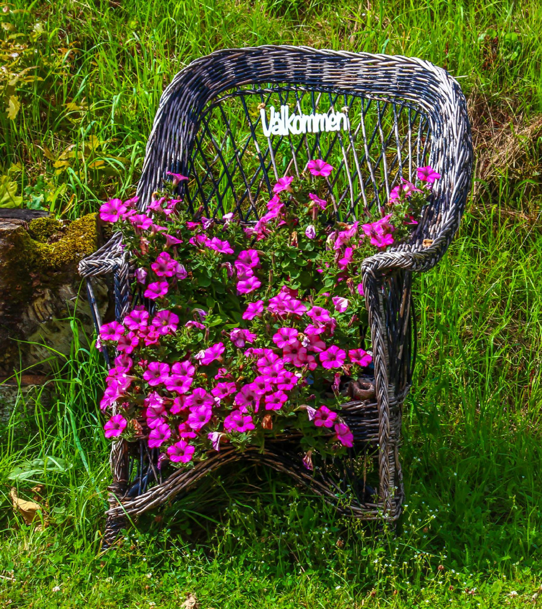A chair by a road leading to a farmhouse. Välkommen = Welcome by barbro.hansson.9