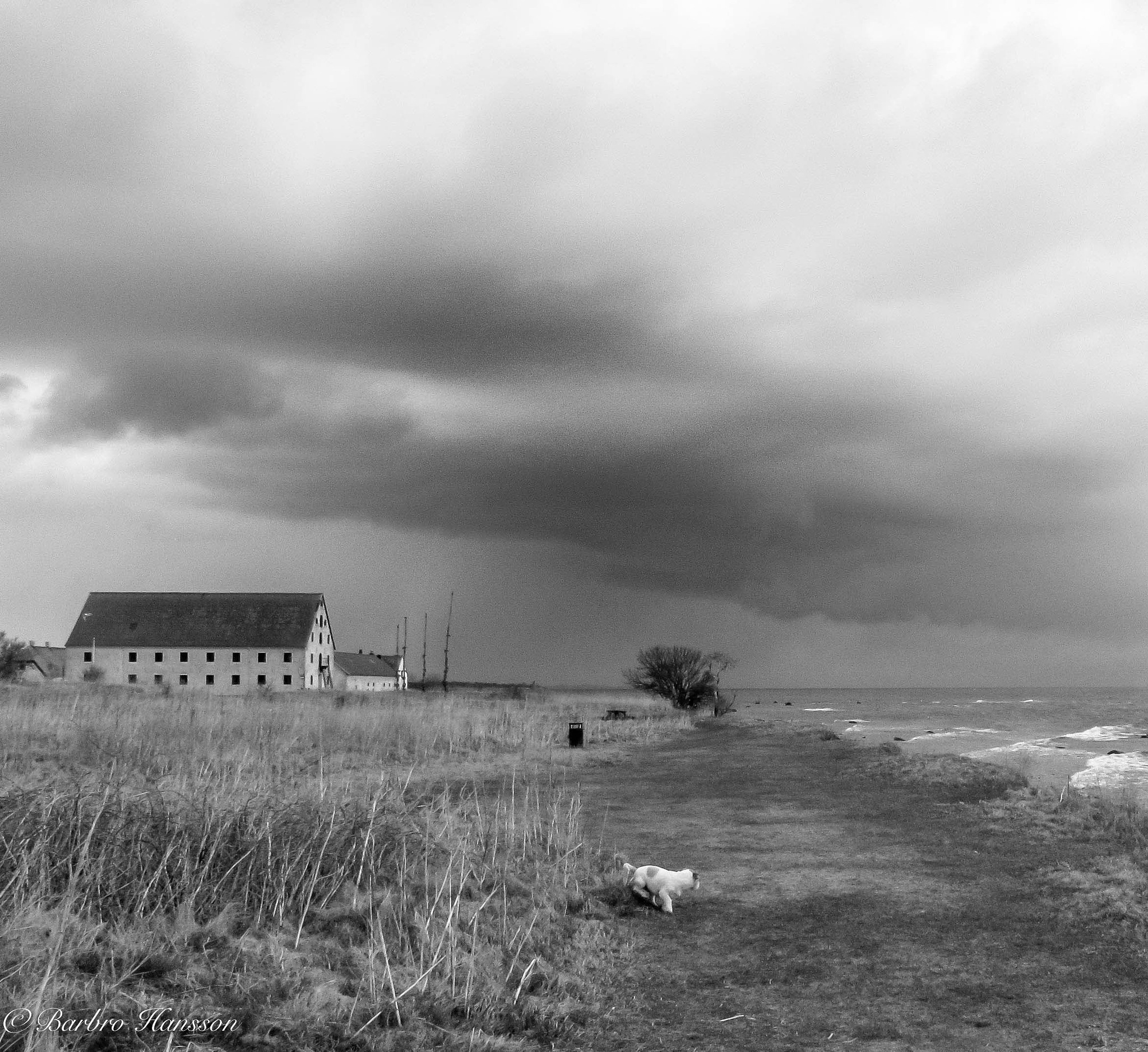 The old house by the sea by barbro.hansson.9