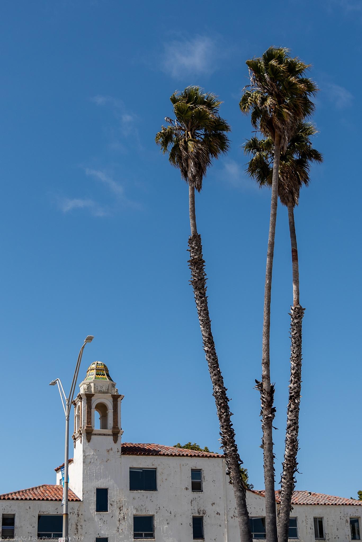 Santa Cruz Main Beach by Available Light Photography